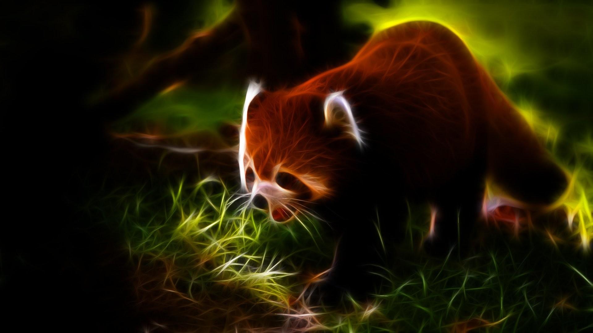 Animals Fractalius red pandas wallpaper | | 241087 .
