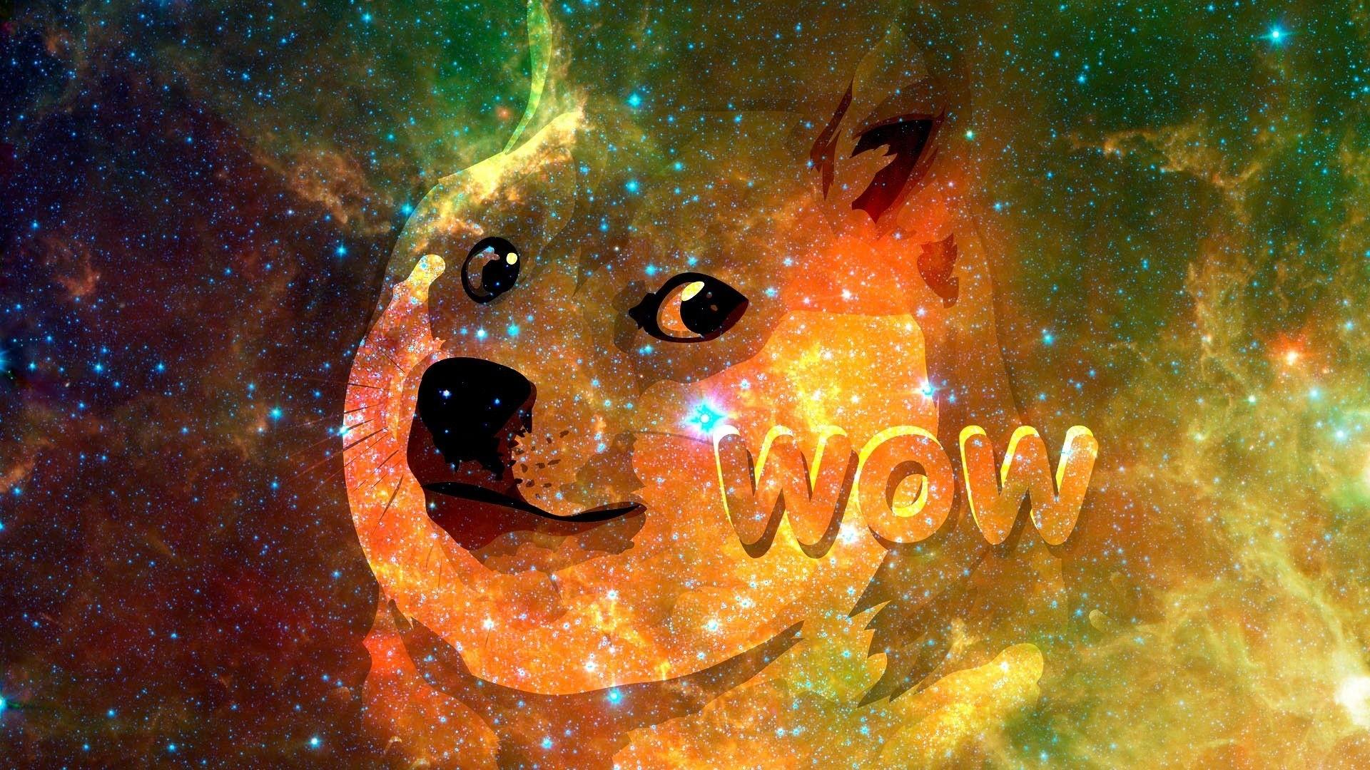 doge-wallpaper-16.jpeg579 KB