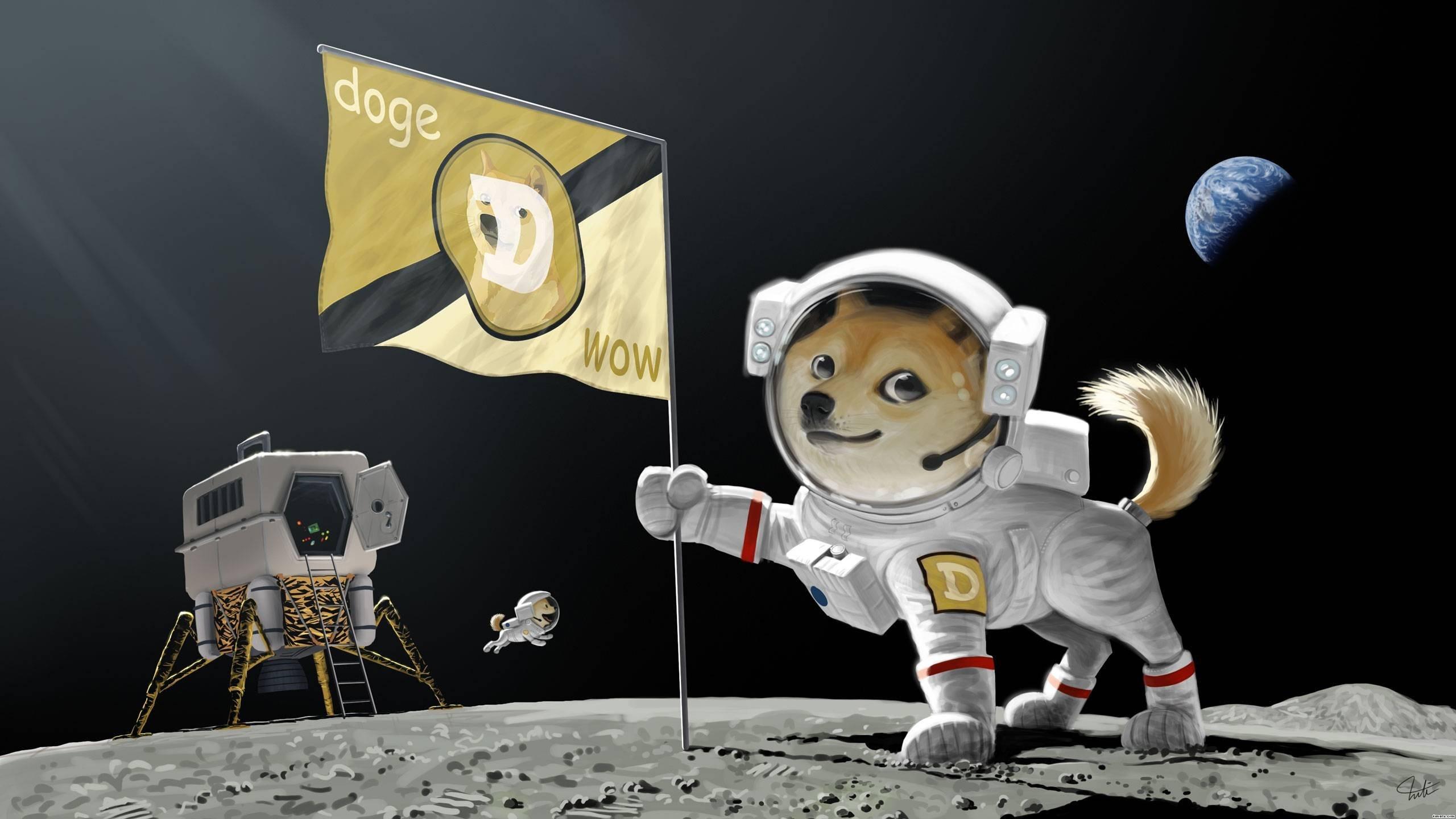 Moon Doge · dogecoin