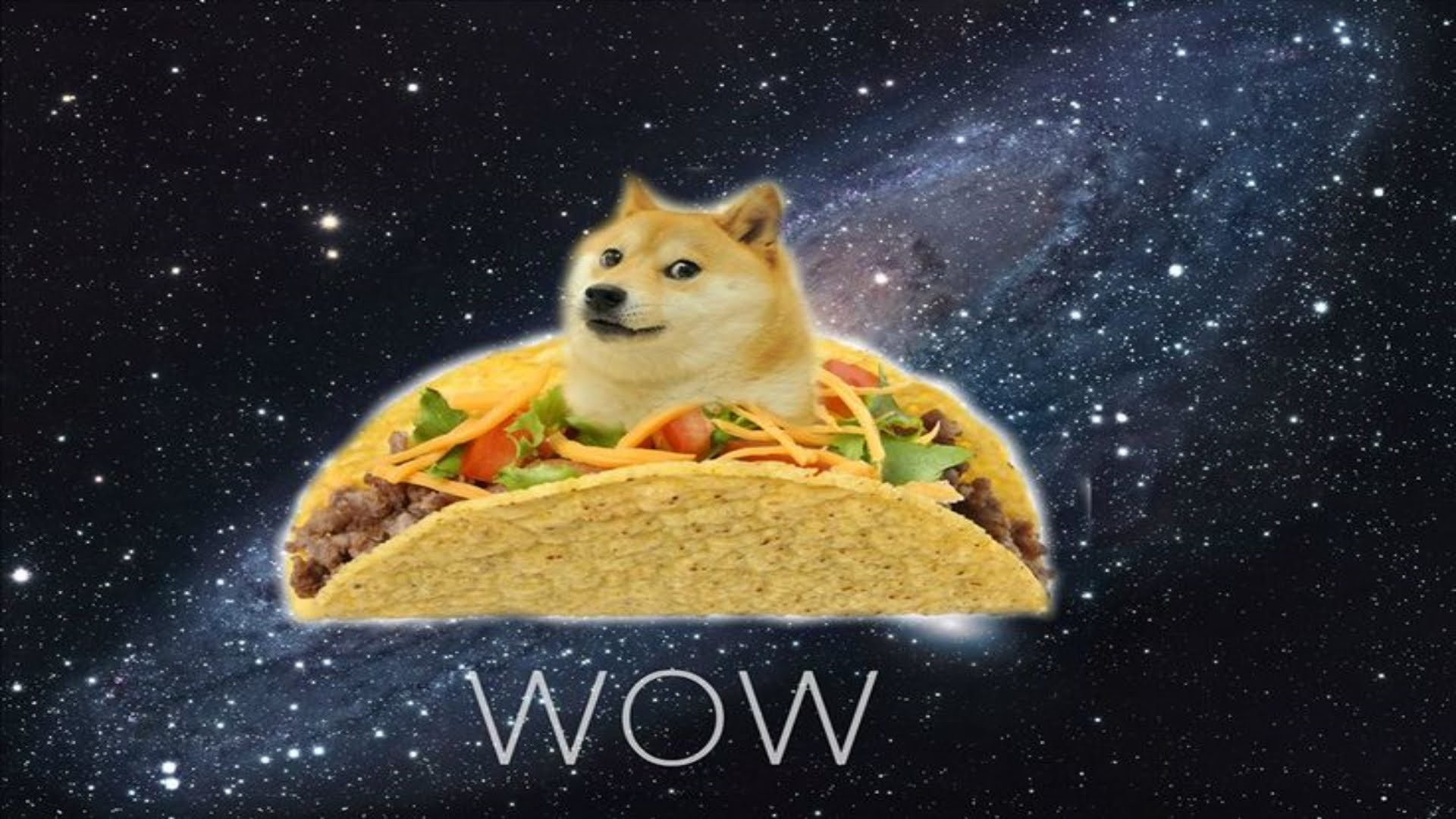 Doge and His Raining Tacos