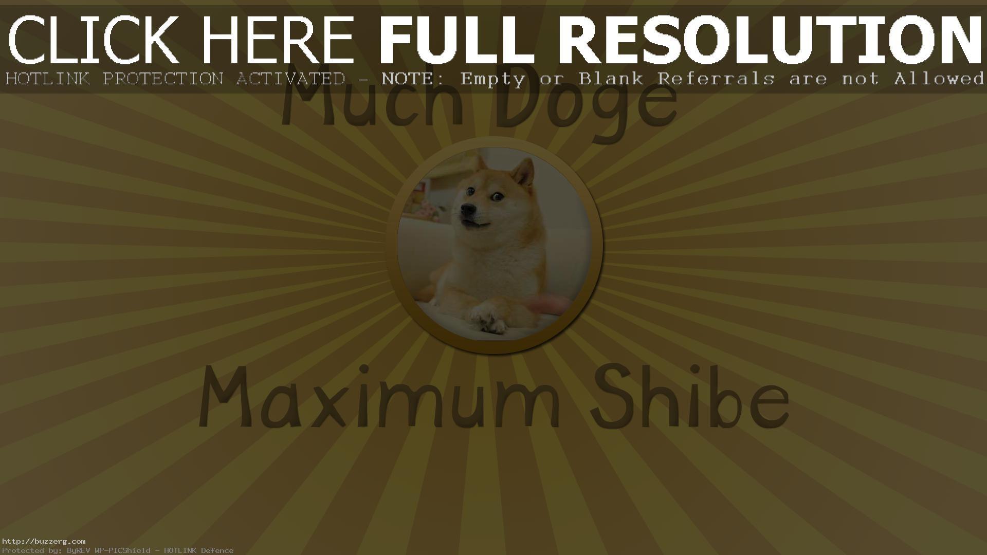 Doge (id: 174792)
