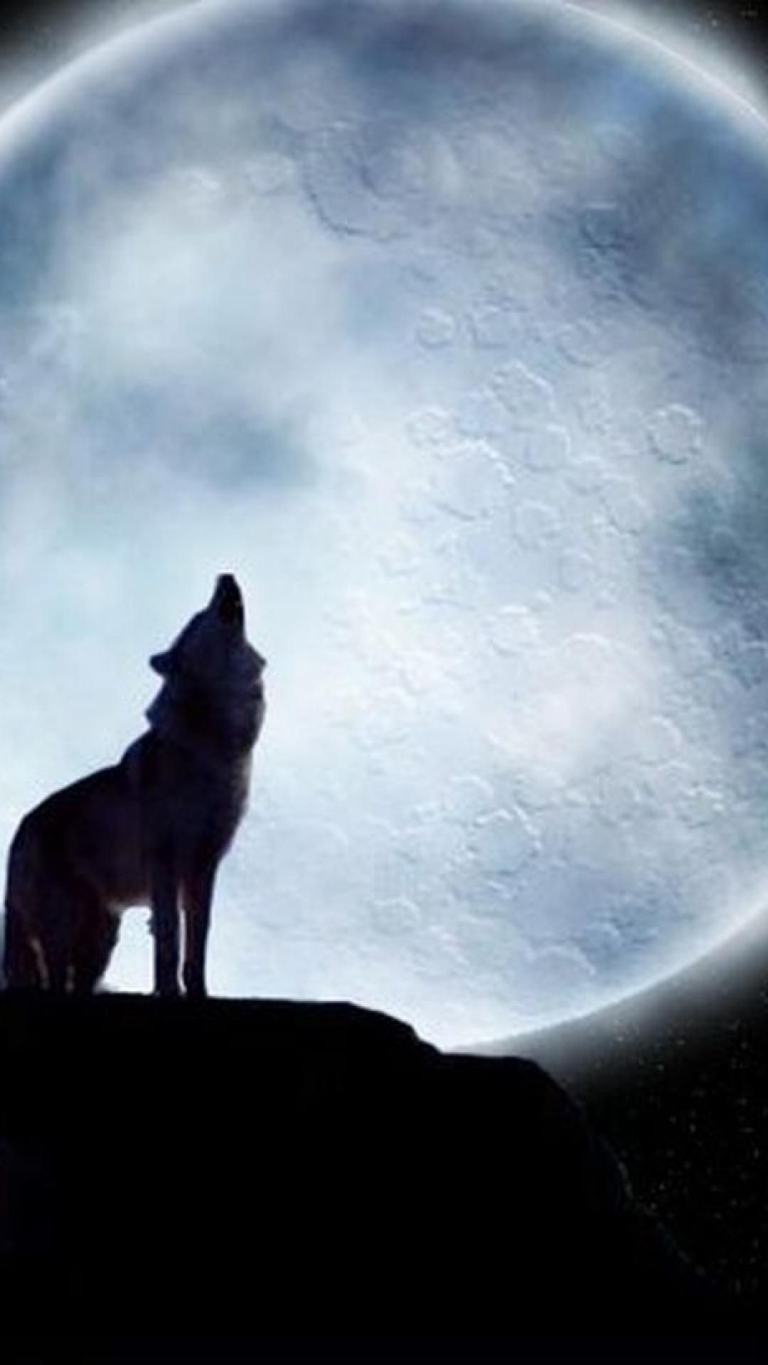 Lone Wolf Poems Iphone 6 Plus Wallpaper