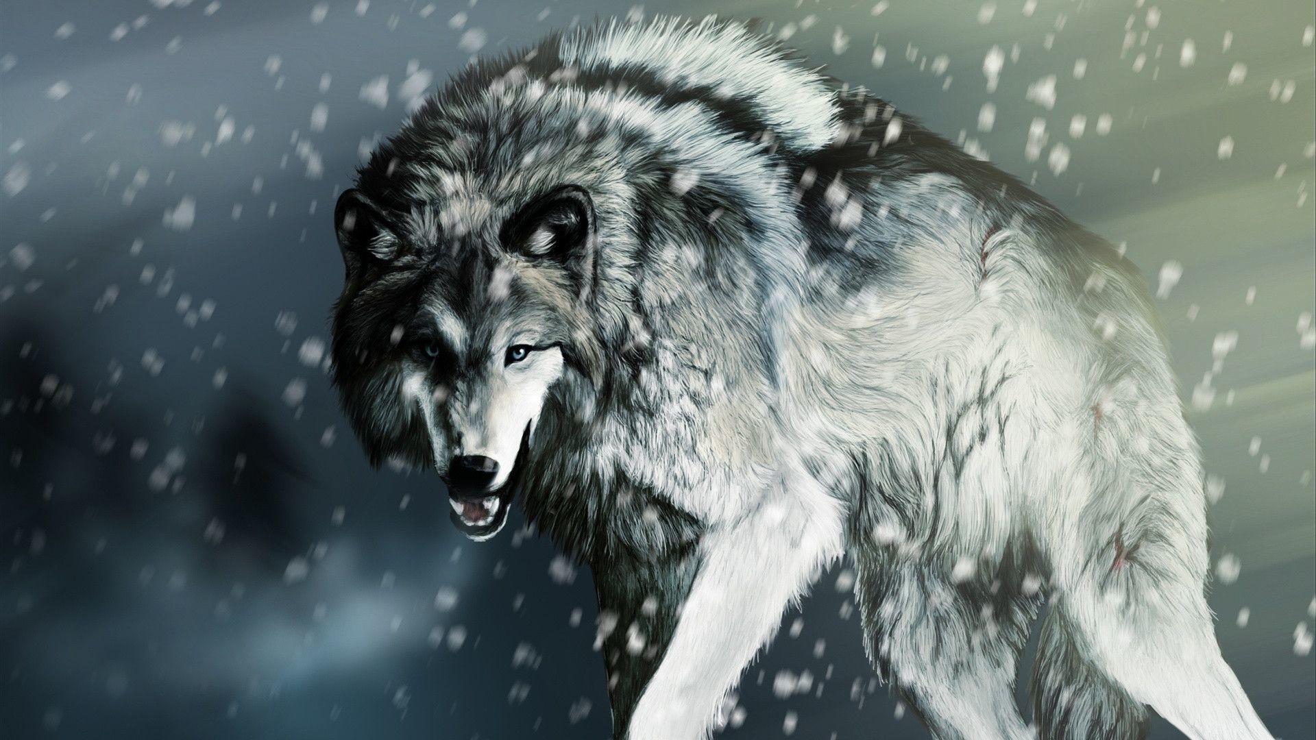 White Alpha Wolf Wallpaper Digital Art Wallpapers 41728