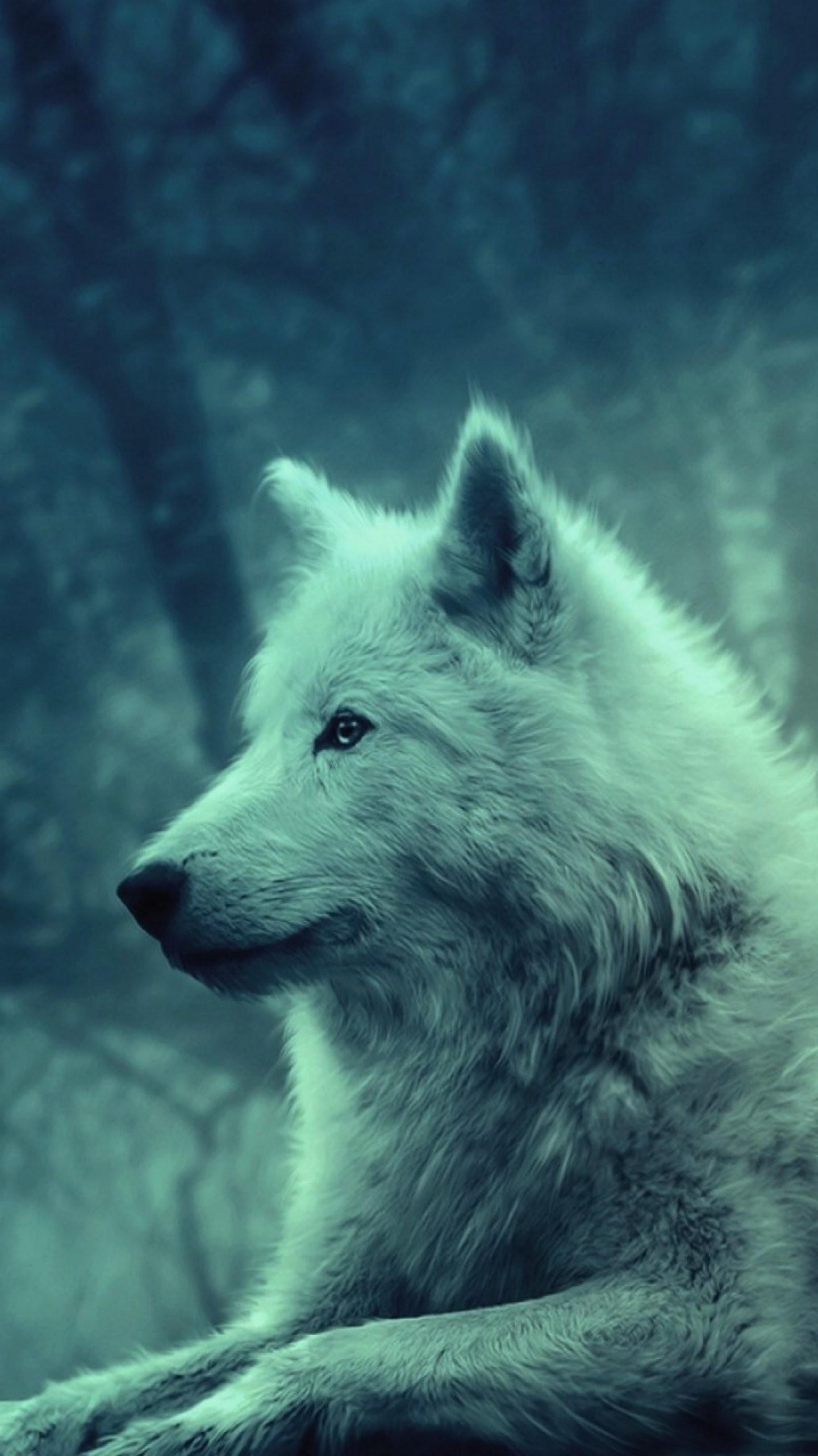 Wallpaper lg g4 cute wolf 1440 2560 qhd