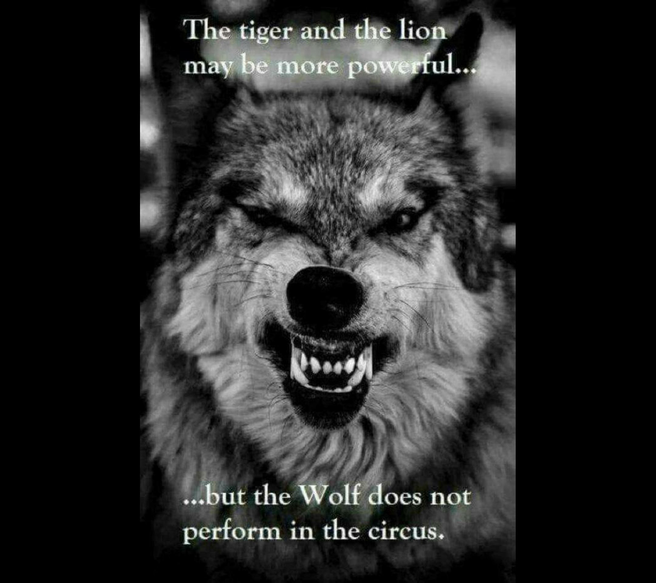 Be Like the Wolf
