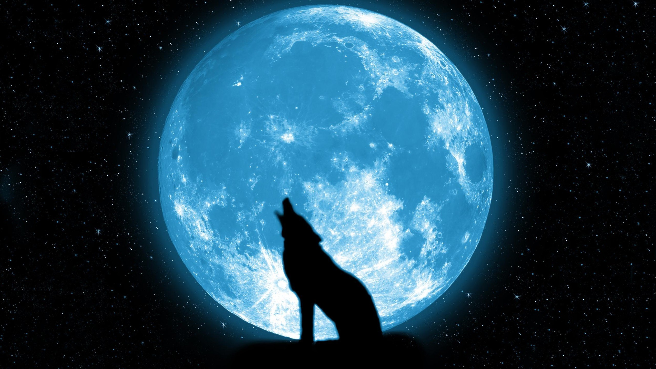 Howling Wolf Wallpapers Widescreen