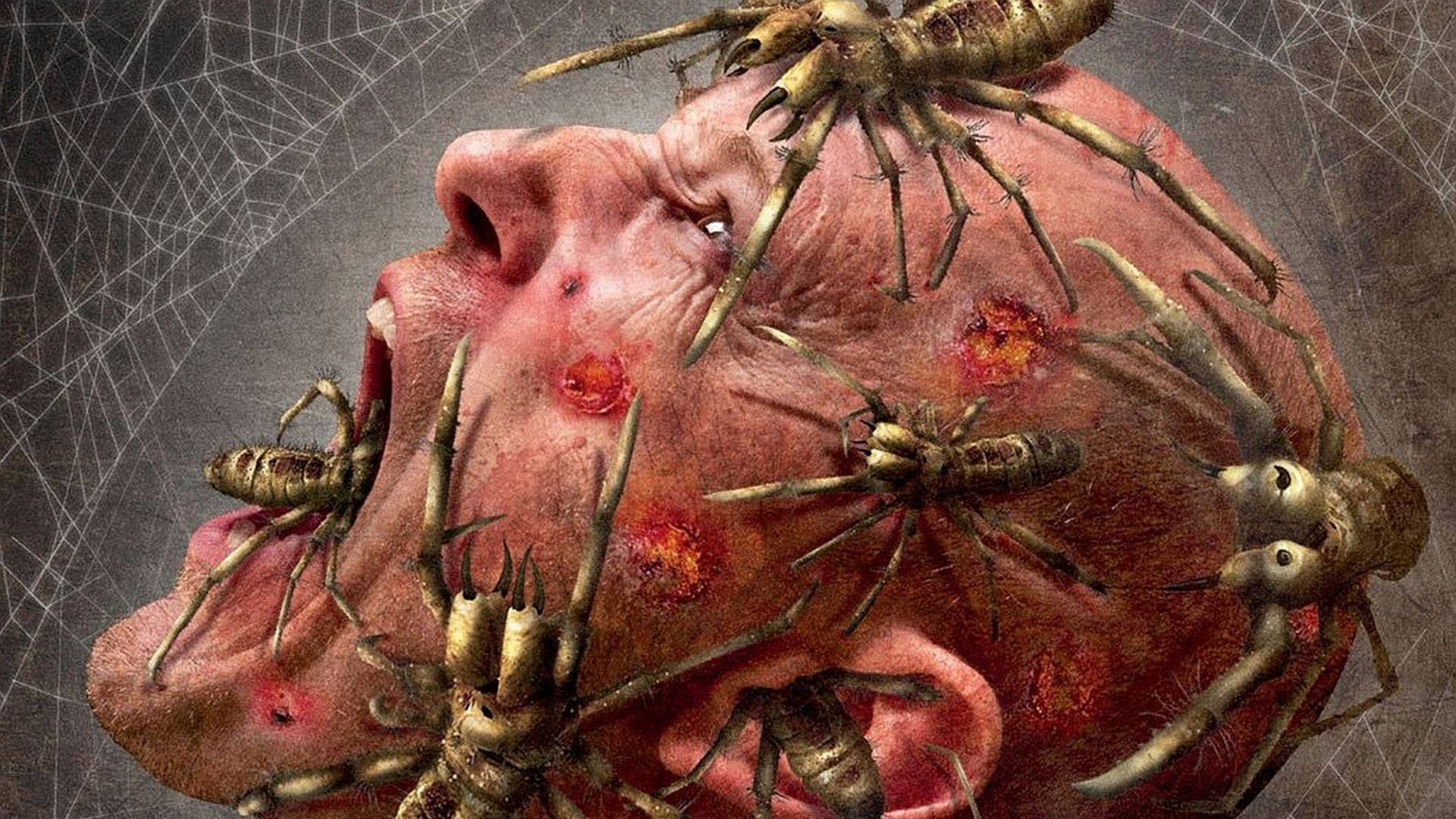 15 Creepiest Spiders in Video Games – YouTube
