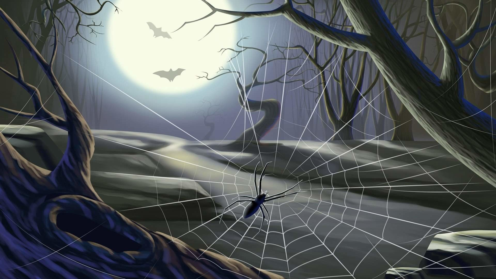 Images Of Scary Spider Web Wallpaper – #SC