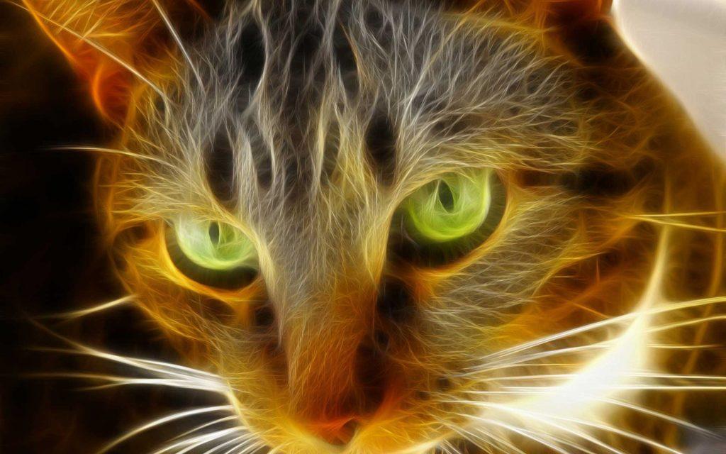 Cool Animal Image Desktop – https://wallawy.com/cool-animal