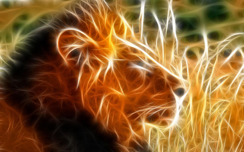 3d animals wallpapers-lion wallpaper hd