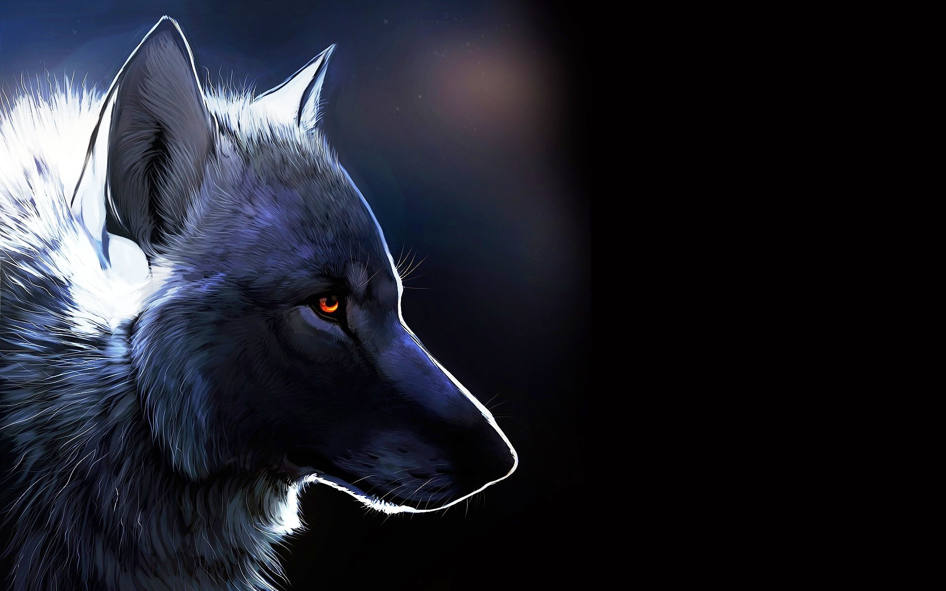 Cool Animal Wallpapers Widescreen