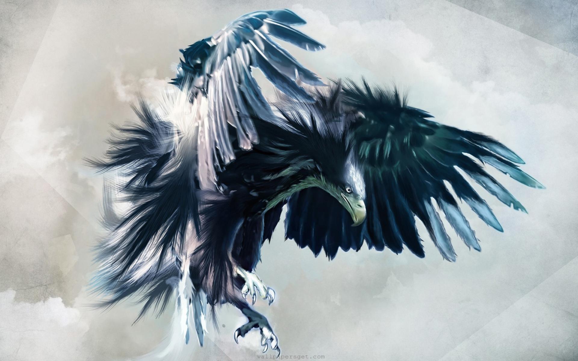 cool eagle pics wallpaper