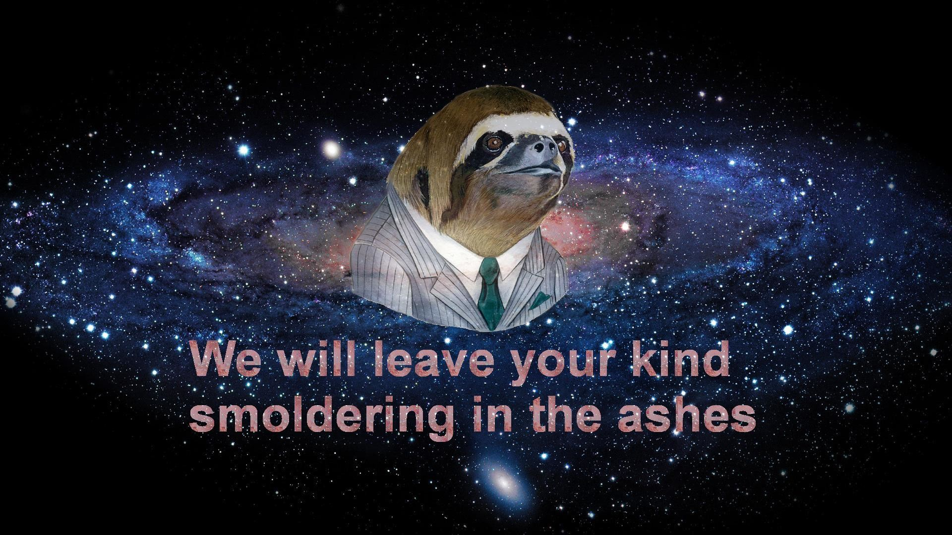 sloth wallpaper 3 | Sloths | Know Your Meme