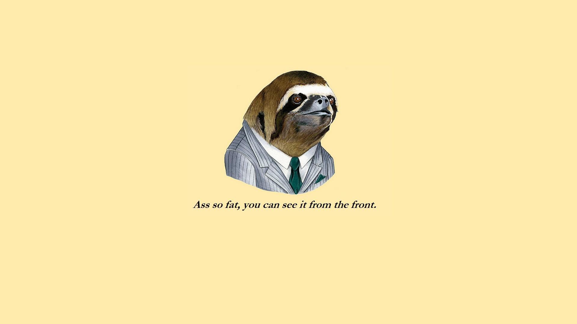 Funny Sloth Face Meme