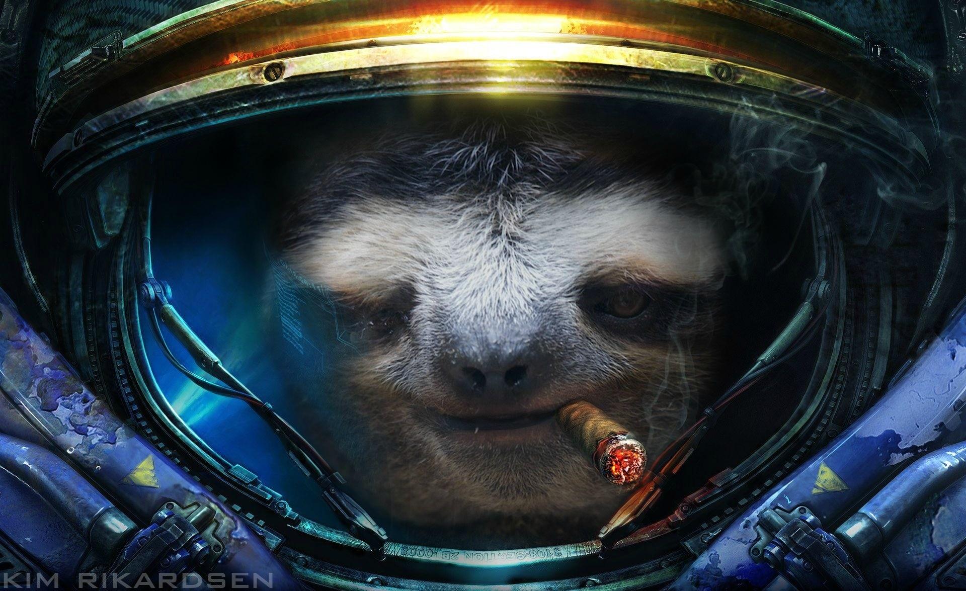 Pix For > Sloth Galaxy Wallpaper