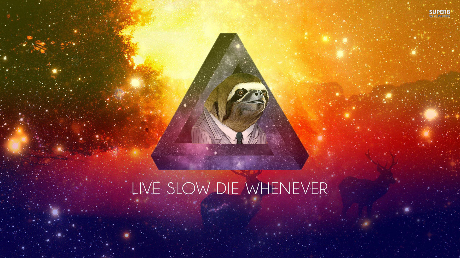 My laptop background I might post this everytime in the context of sloths