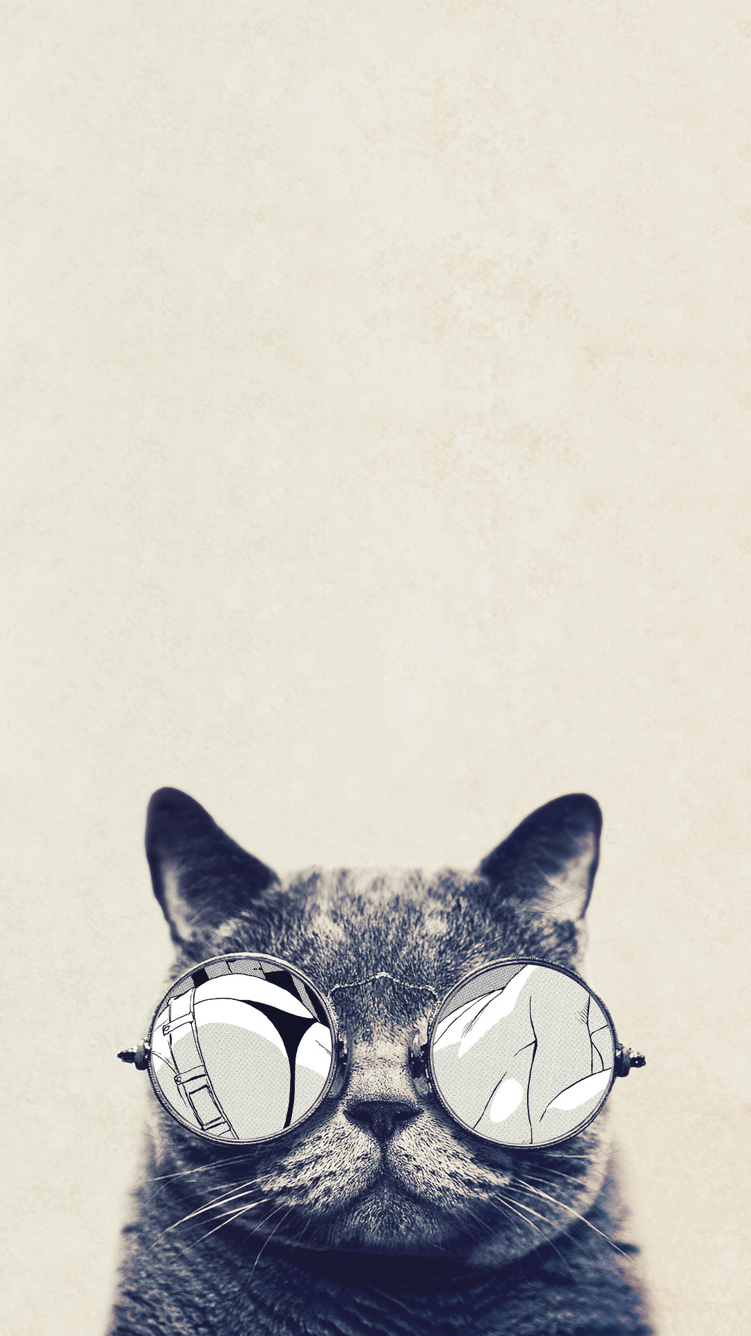 Cool Cat Glasses iPhone 6 Plus HD Wallpaper …