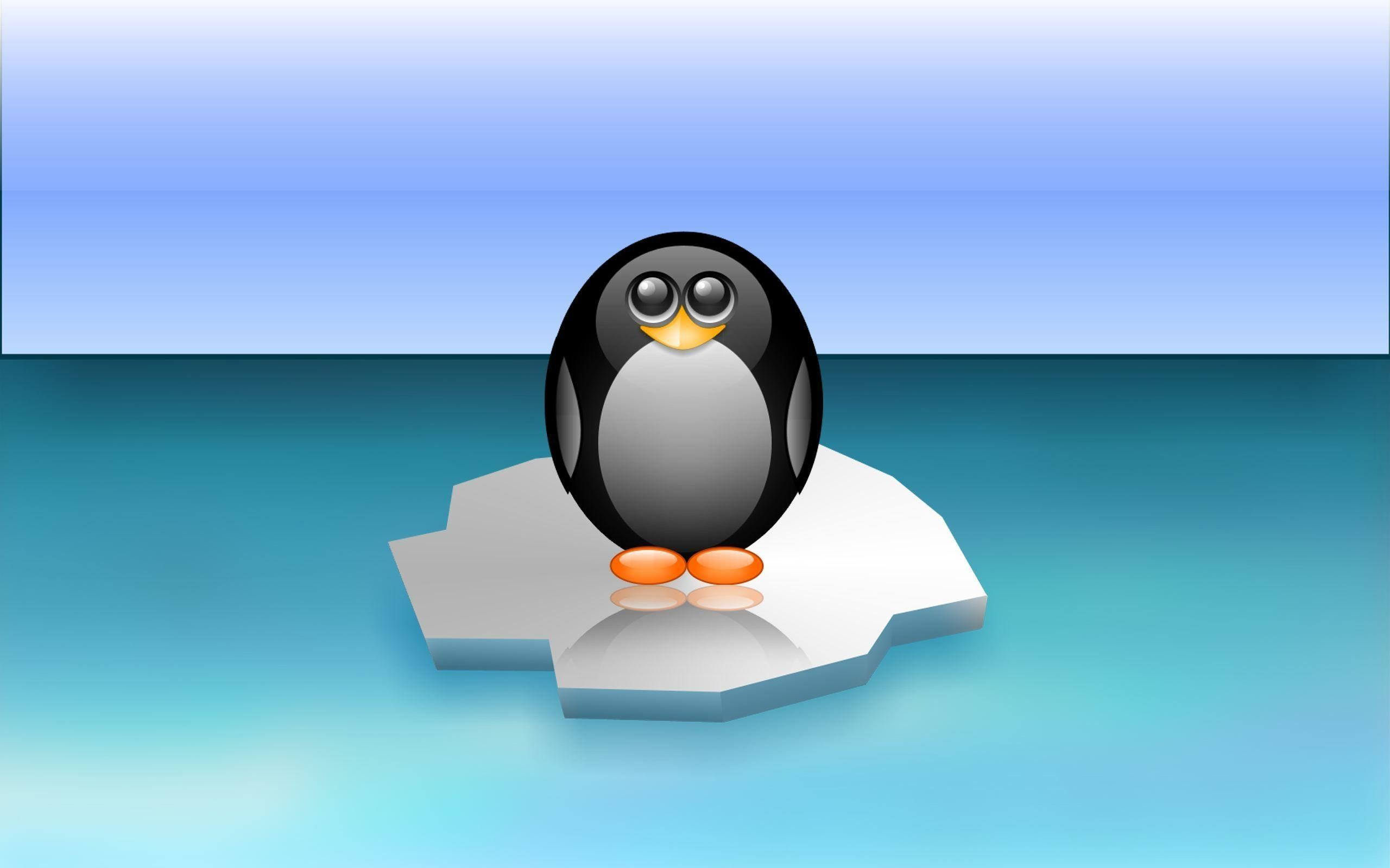 Cute Penguin Cartoon Wallpaper – WallDevil