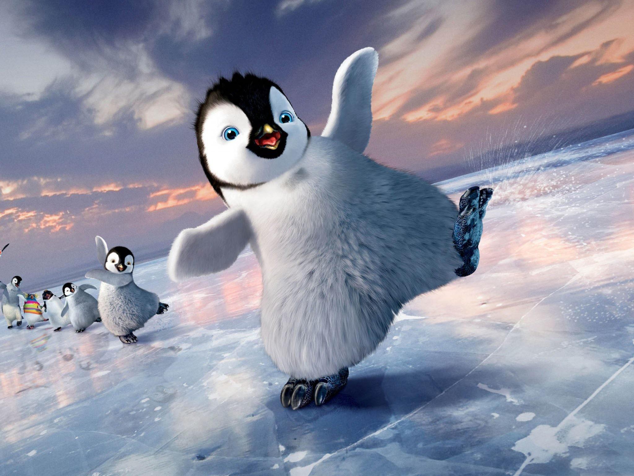 из-за живая открытка доброе утро пингвин умильные
