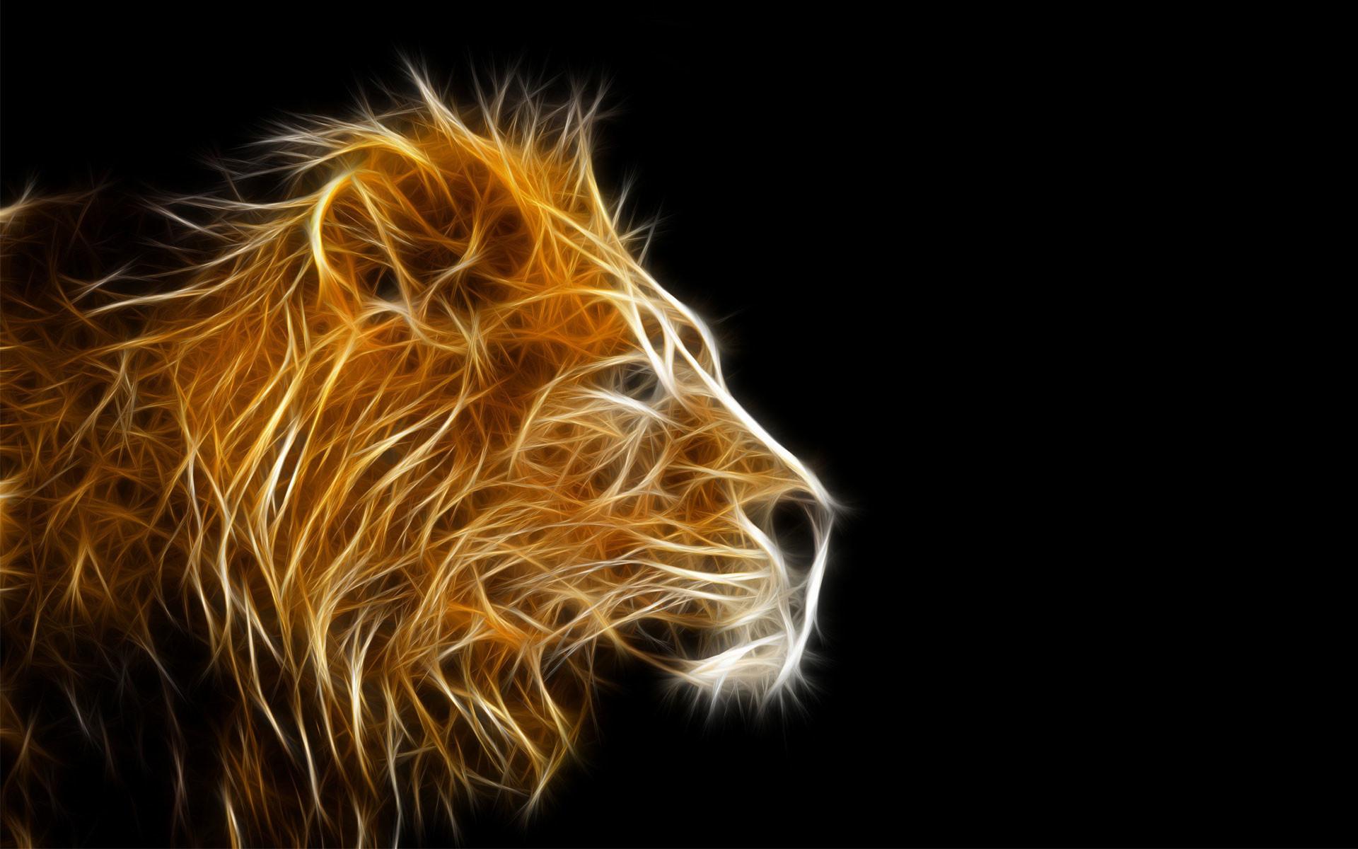 3d animal wallpapers- Lion wallpaper