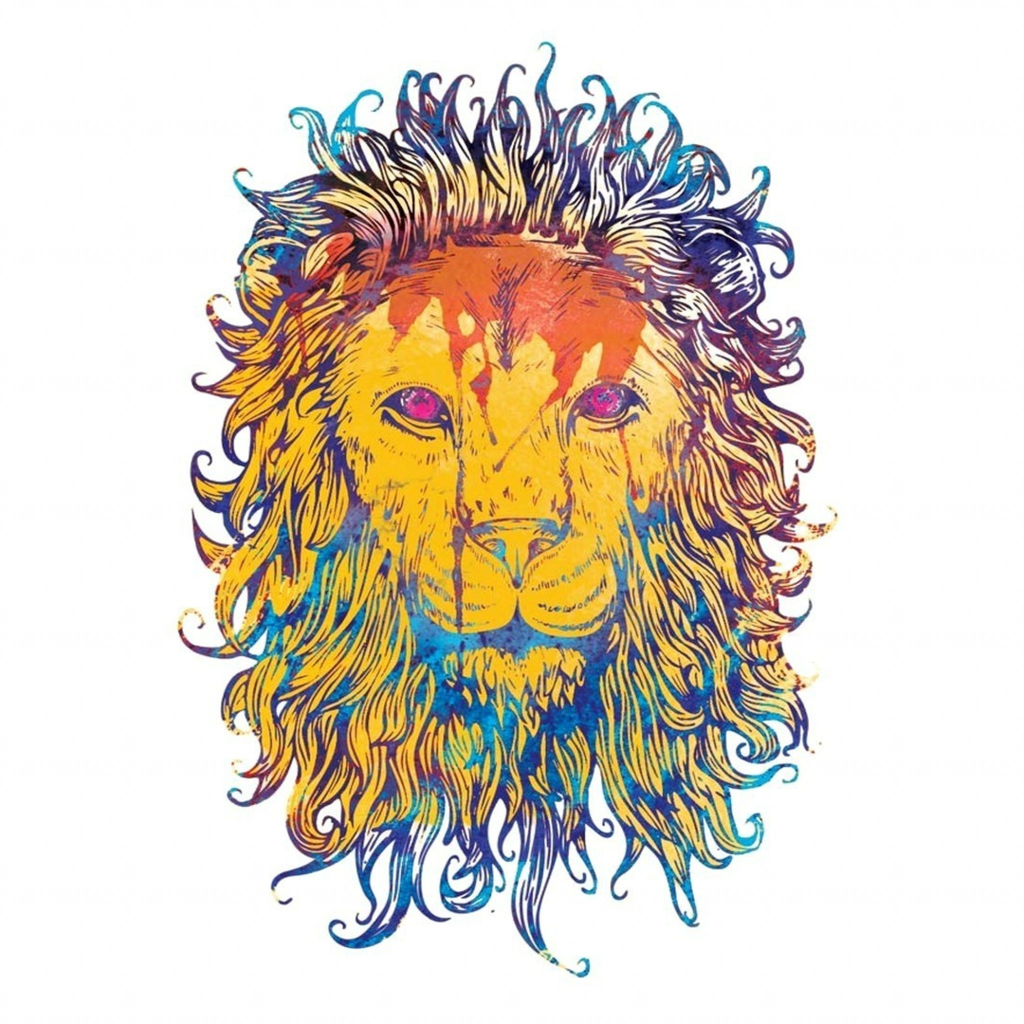 Wallpaper lion, drawing, colorful, king, king of beasts