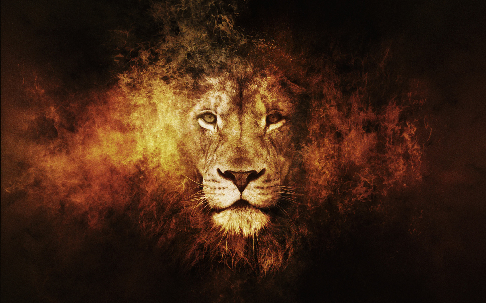 abstract lion wallpaper