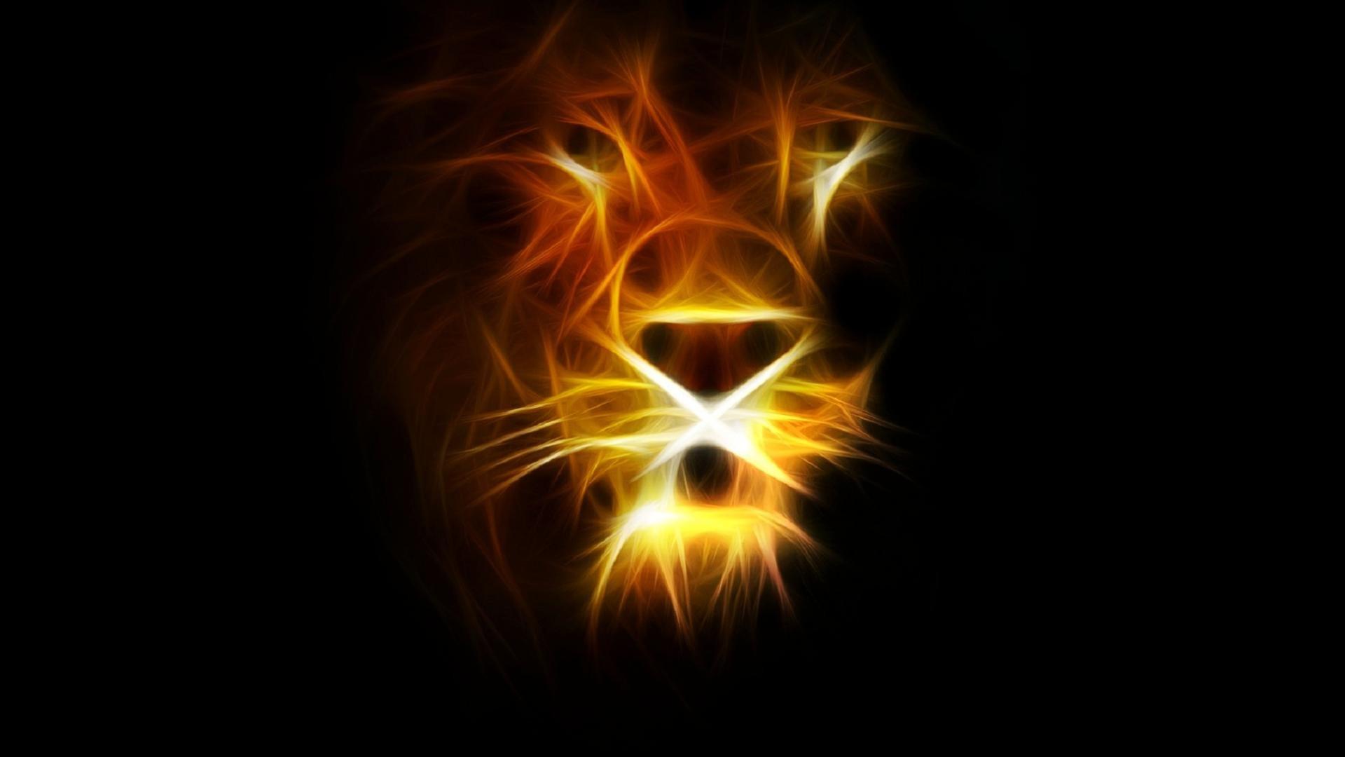 Animal – Lion Wallpaper