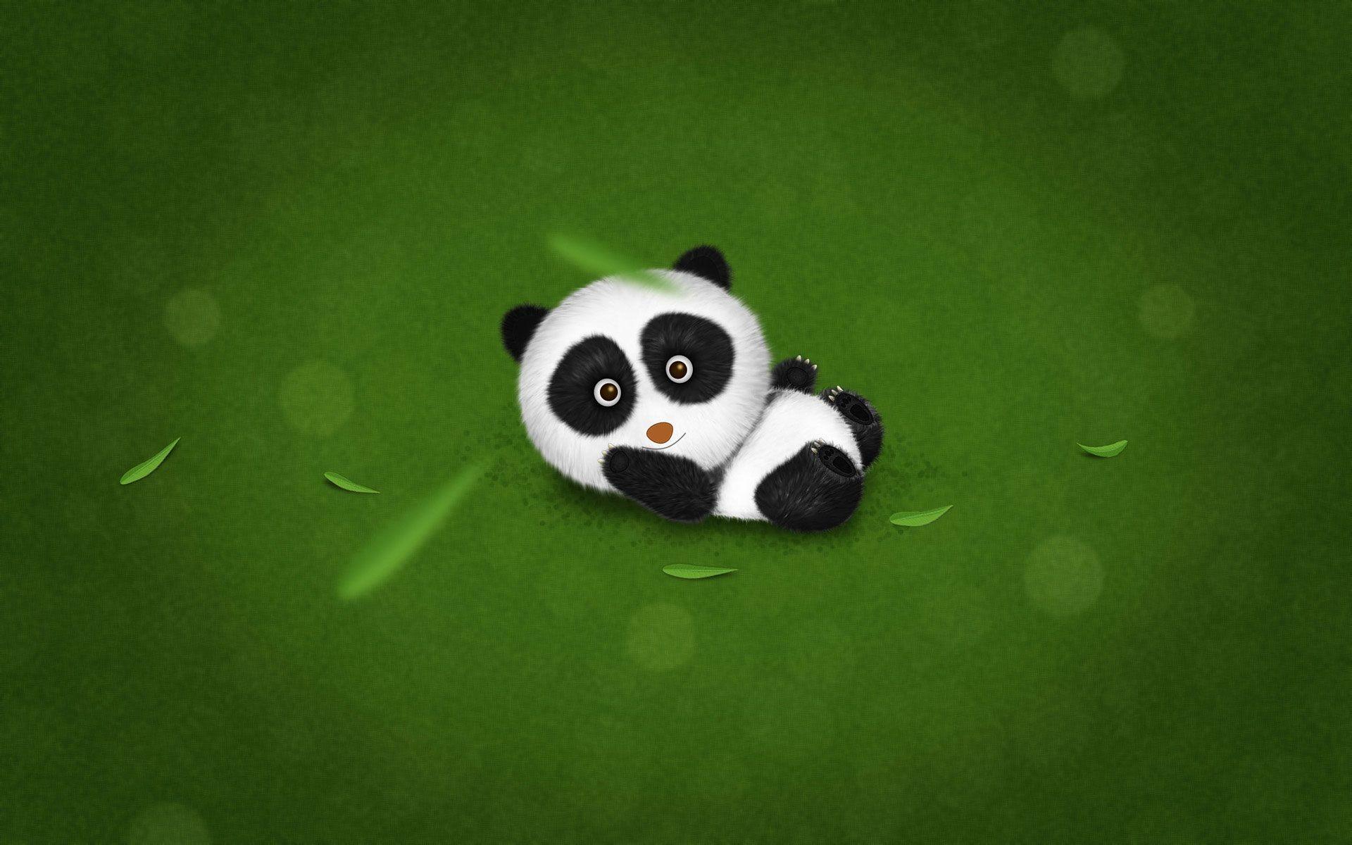 cute baby panda themed wallpaper for desktops (Berton Edwards 1920 x