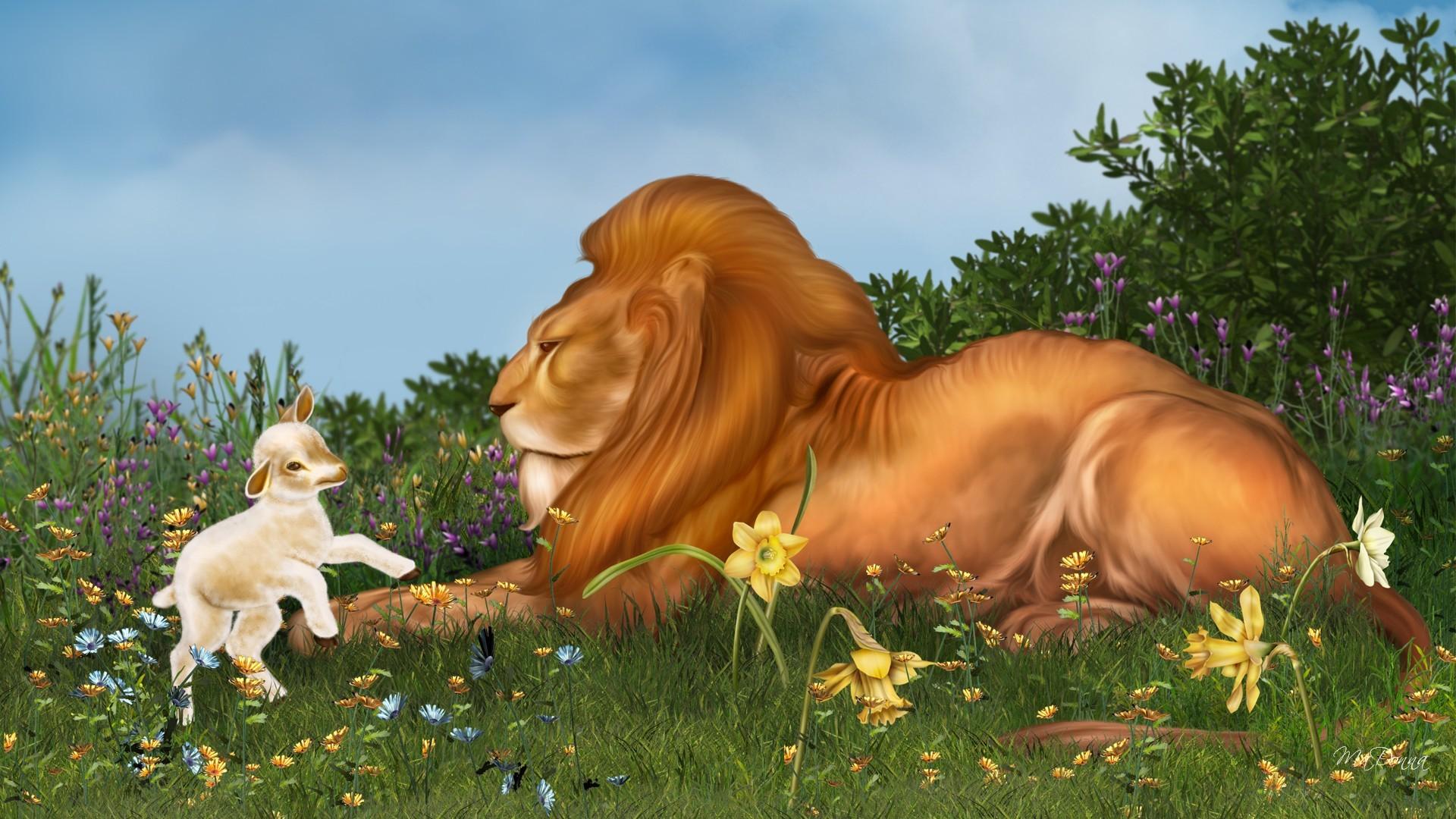 desktop hd lion and lamb pics
