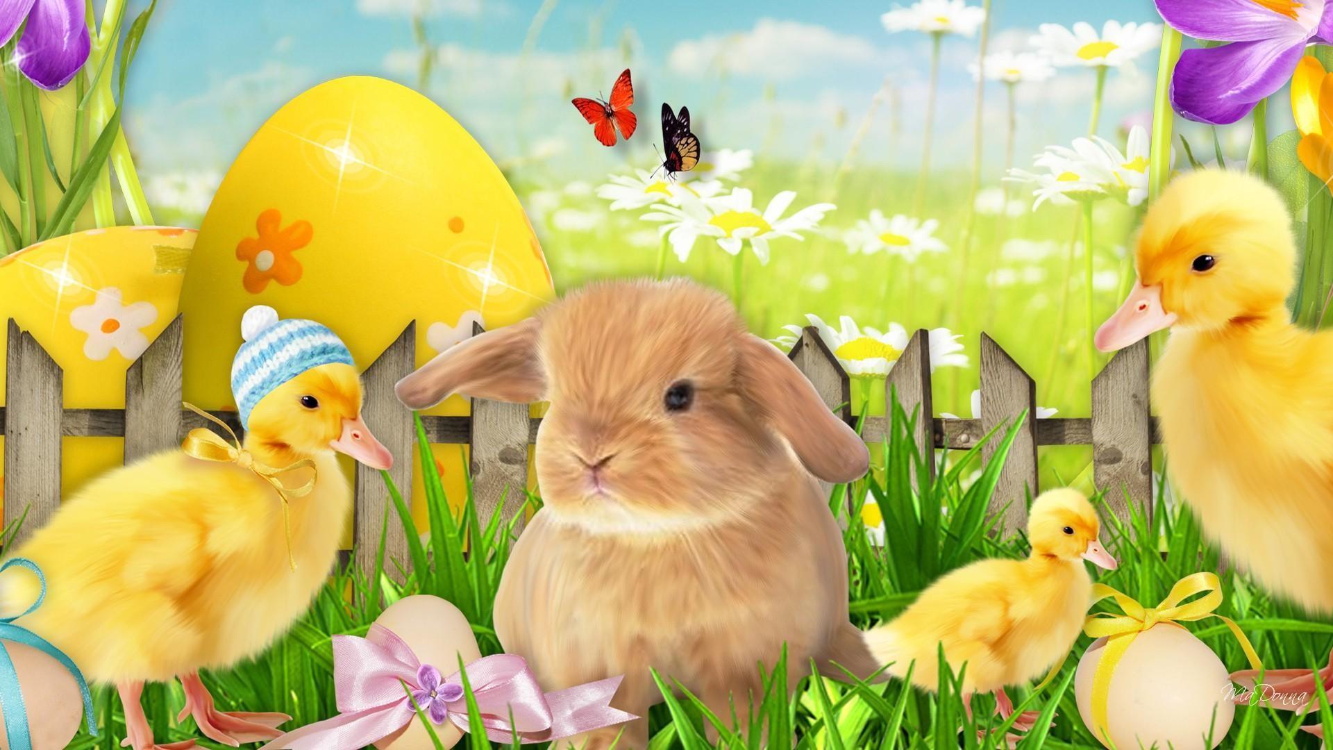 Lovely Easter Morning
