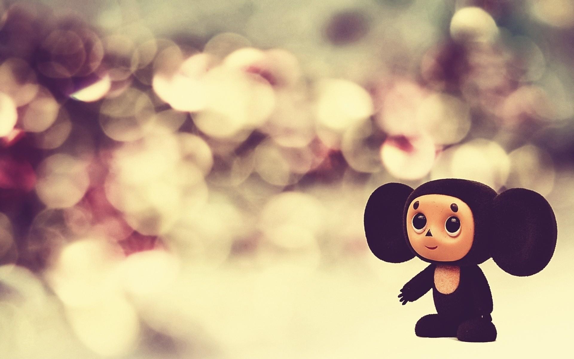 Baby Monkey. cute wallpapers hd
