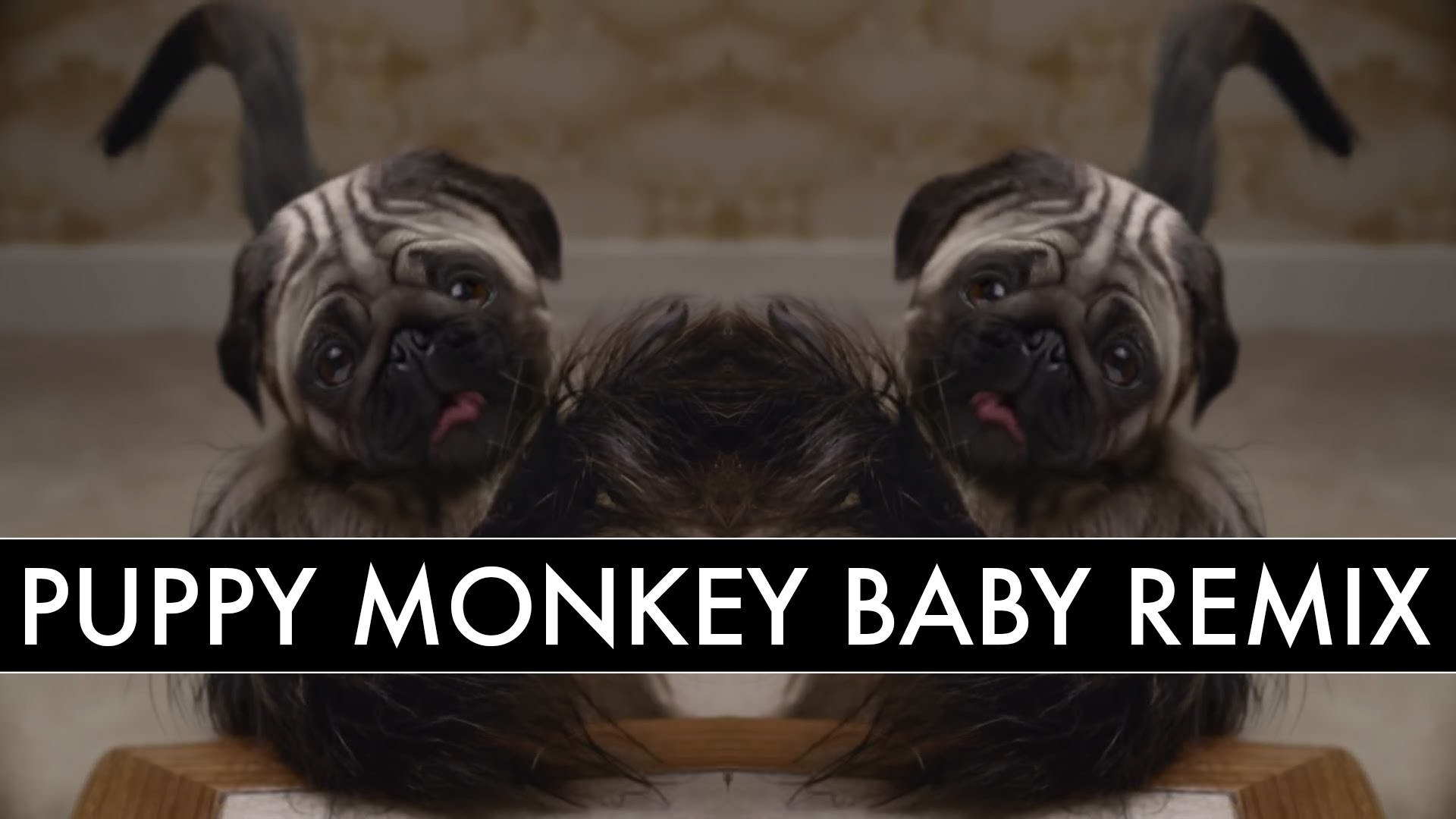 A Remix of the Disturbing 'Puppy Baby Monkey' Mountain Dew Super Bowl 50  Commercial
