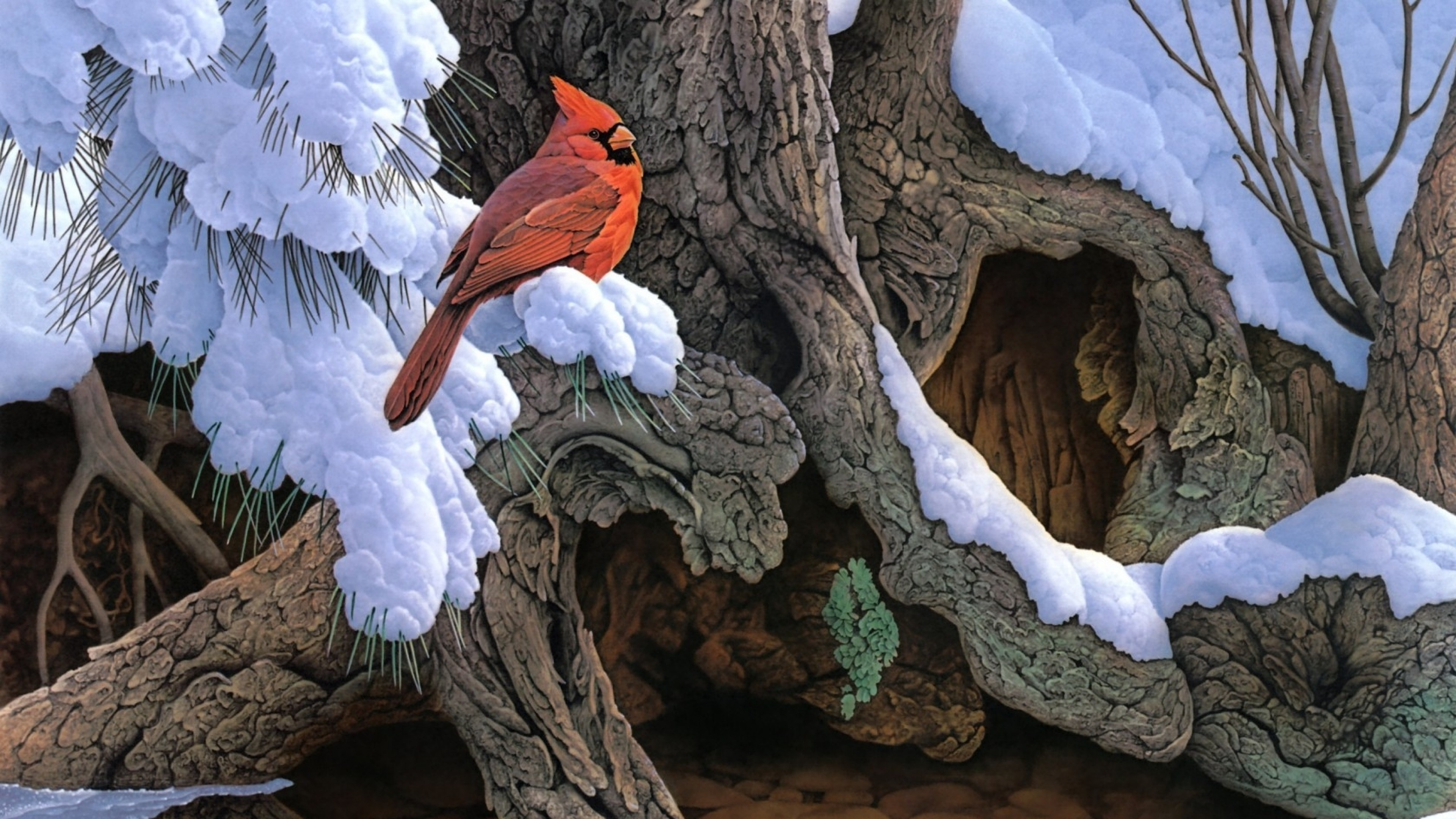 Wallpaper painting, snow, winter, tree, bird, cardinal