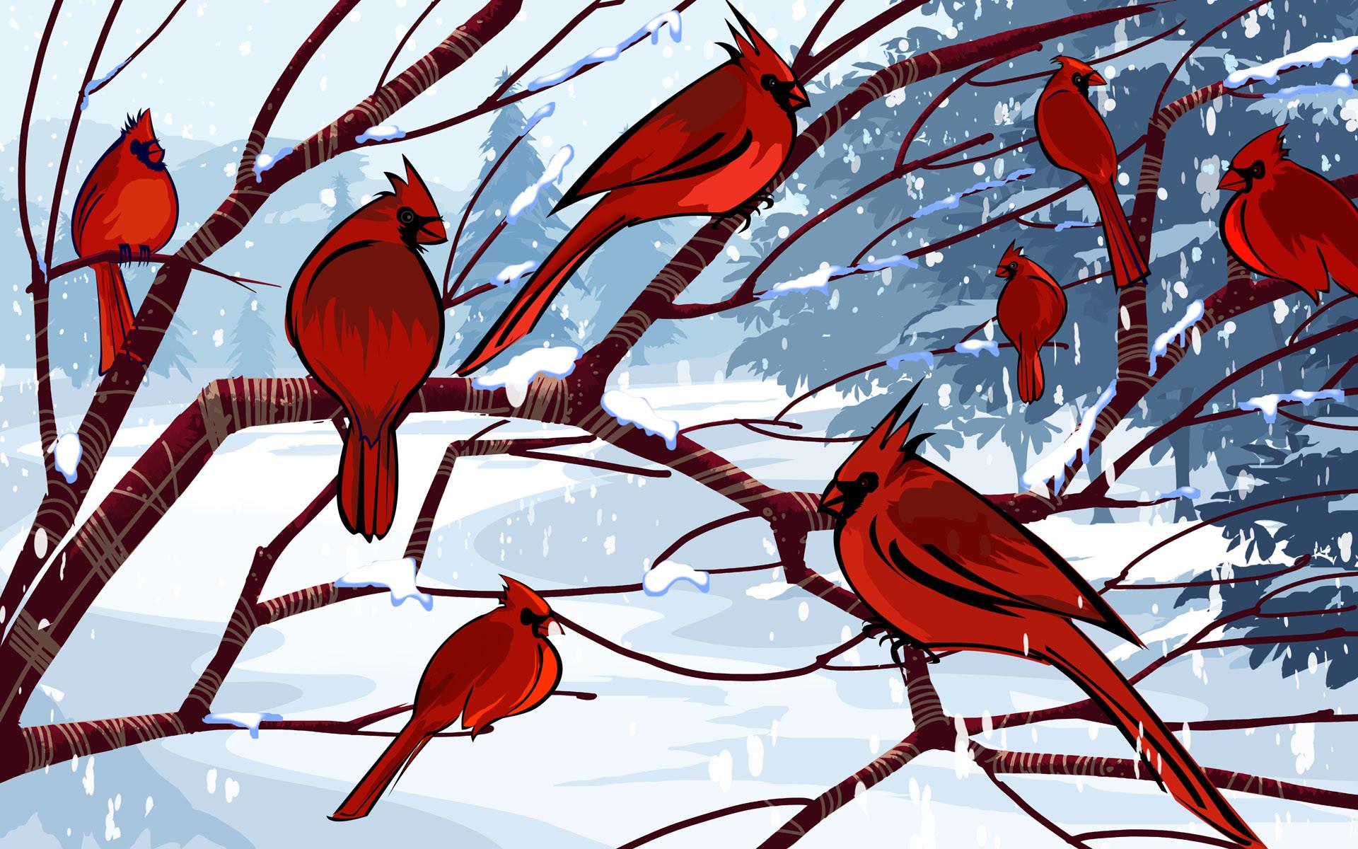 Northern Cardinal Wallpapers