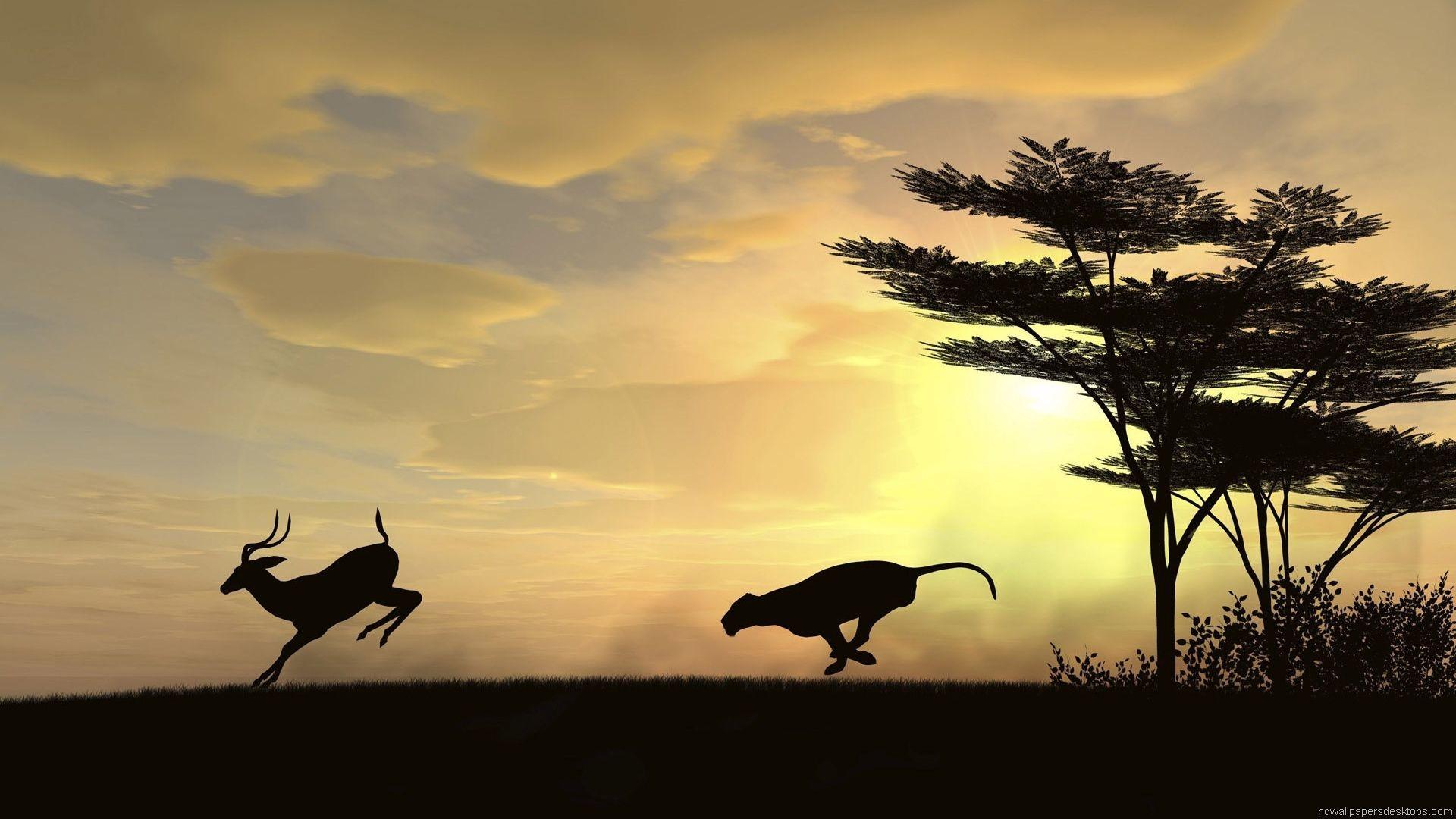 animals-wallpapers-hd-widescreen-desktop-backgrounds – HD Wide .