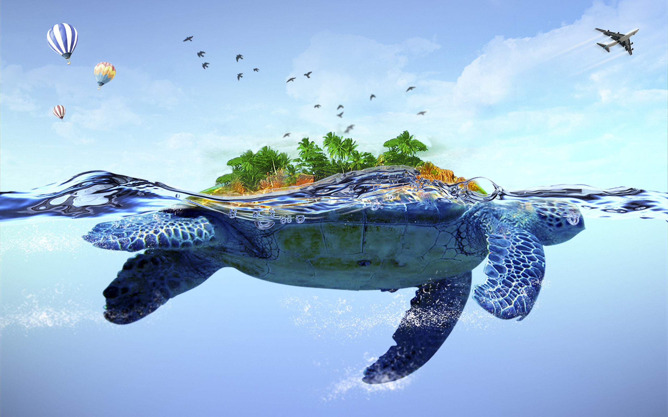 HD-Turtle-Wallpaper