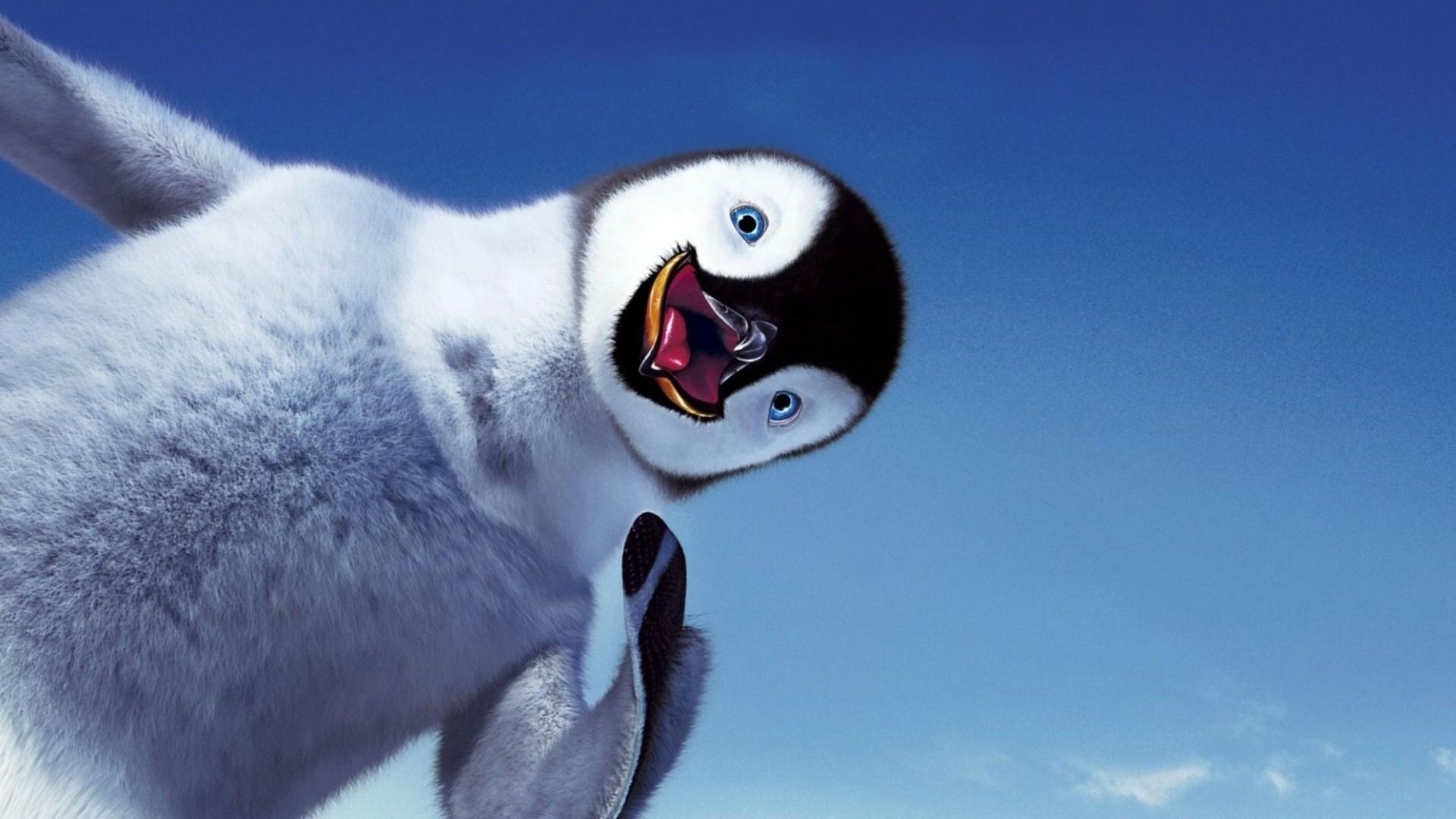 Baby penguin Wallpapers, Baby penguin Backgrounds, Baby penguin Free .