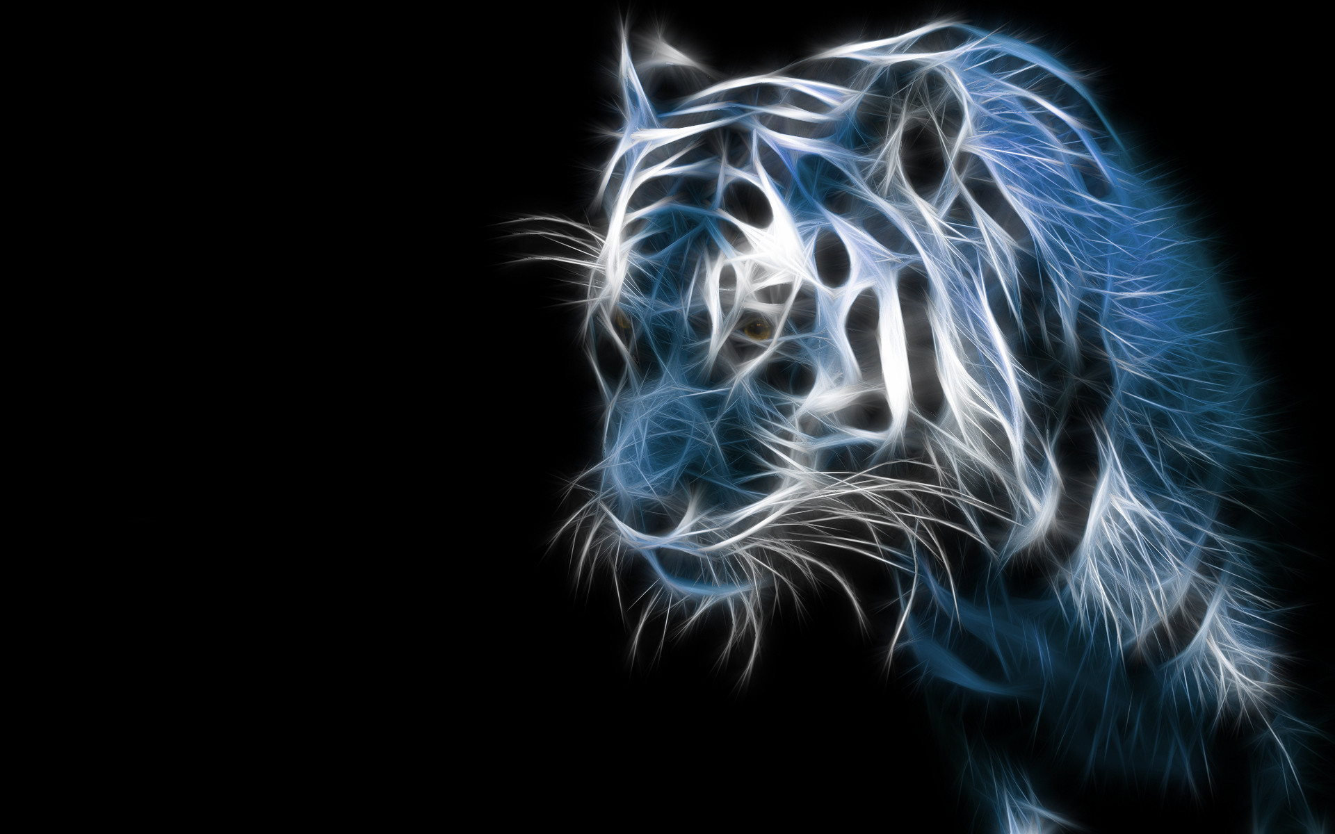Samsung Galaxy Wallpapers HD – Beautiful black and white tiger wallpaper