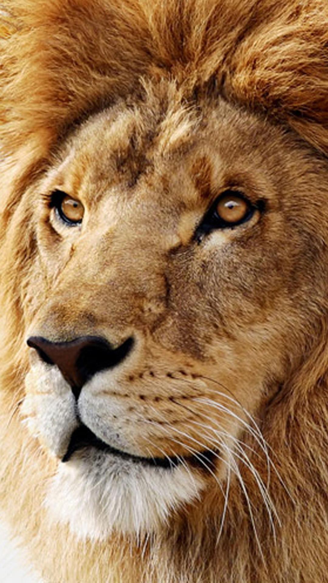 Mac os x lion Samsung Galaxy S5 Wallpapers.jpg