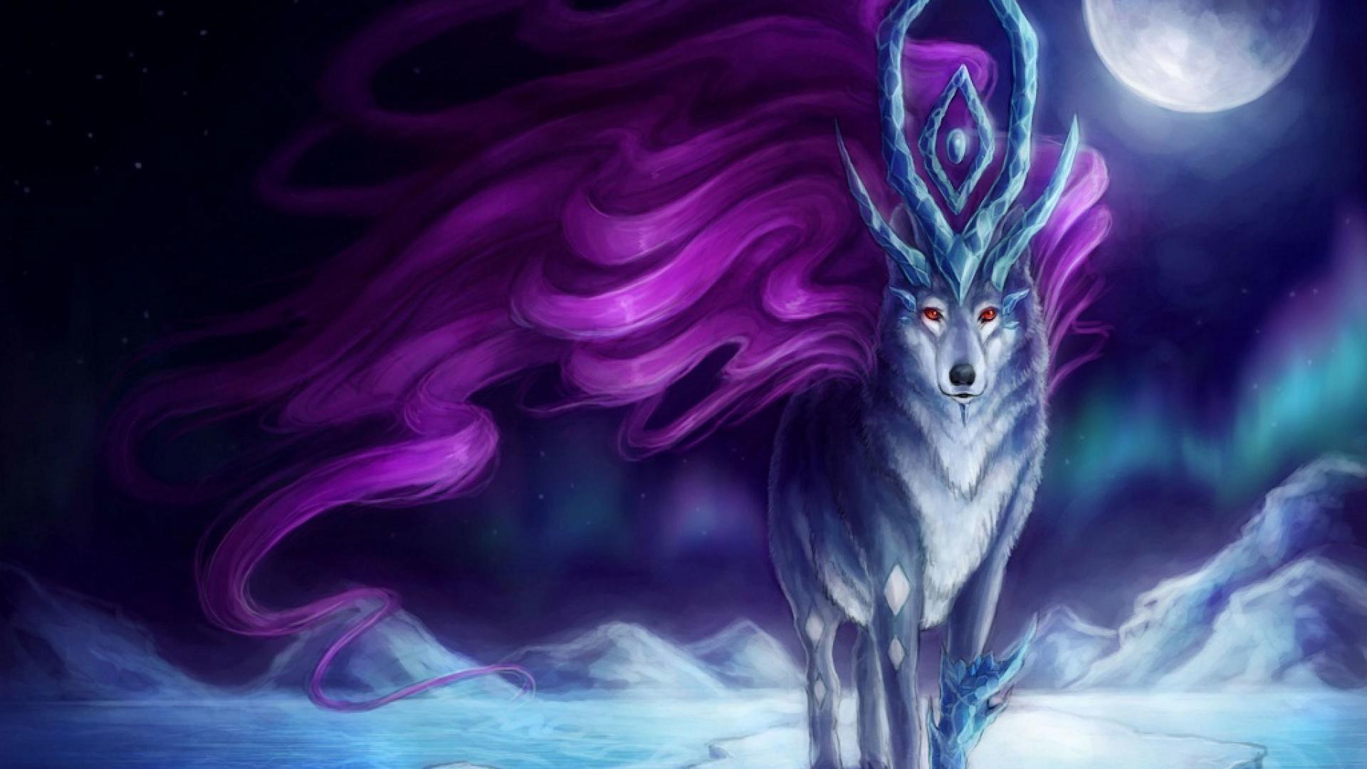 hd pics photos beautiful animated wolf polar animals hd quality desktop  background wallpaper