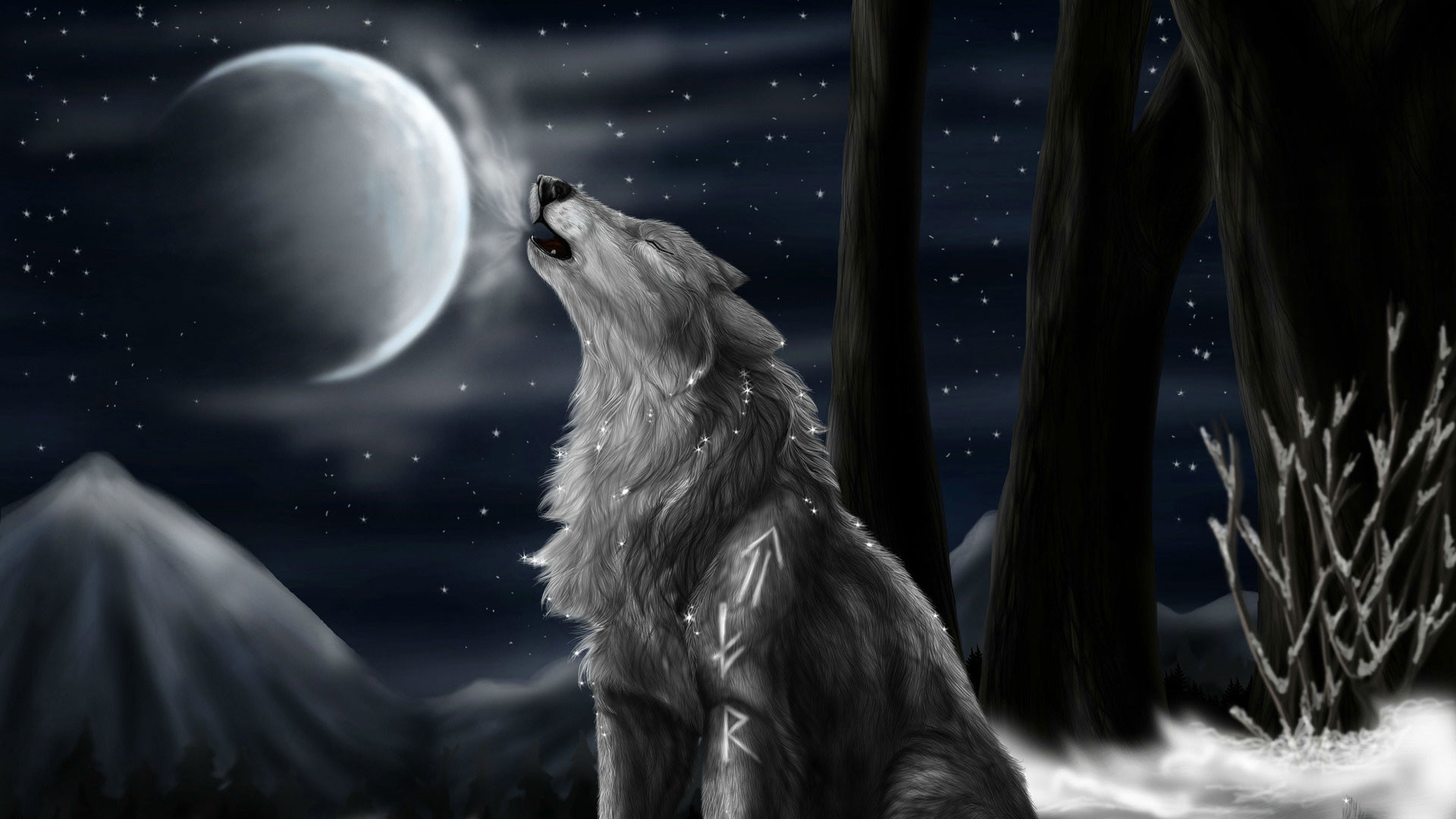 hd pics photos attractive 3d animated howling wolf in night hd quality desktop  background wallpaper