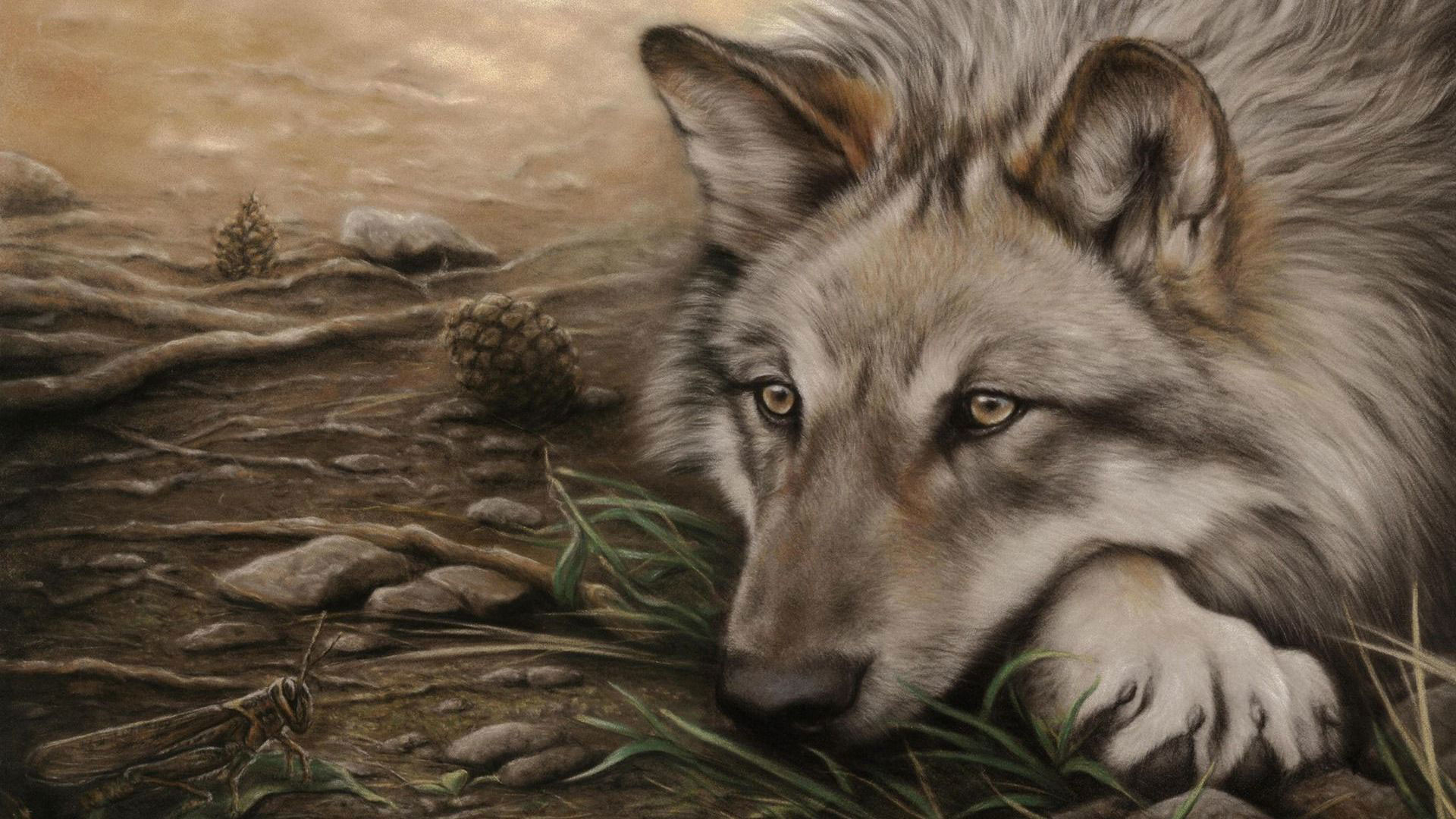 hd pics photos attractive animated wolf drawing painting hd quality desktop  background wallpaper