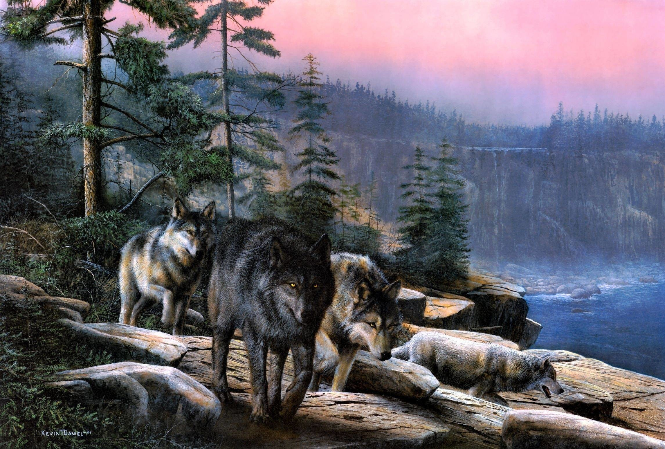Wallpapers For > Animated Wolf Pack Wallpapers