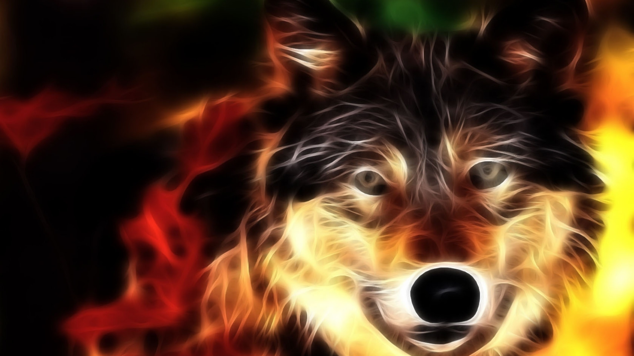 Preview wallpaper wolf, face, light, lines 2560×1440