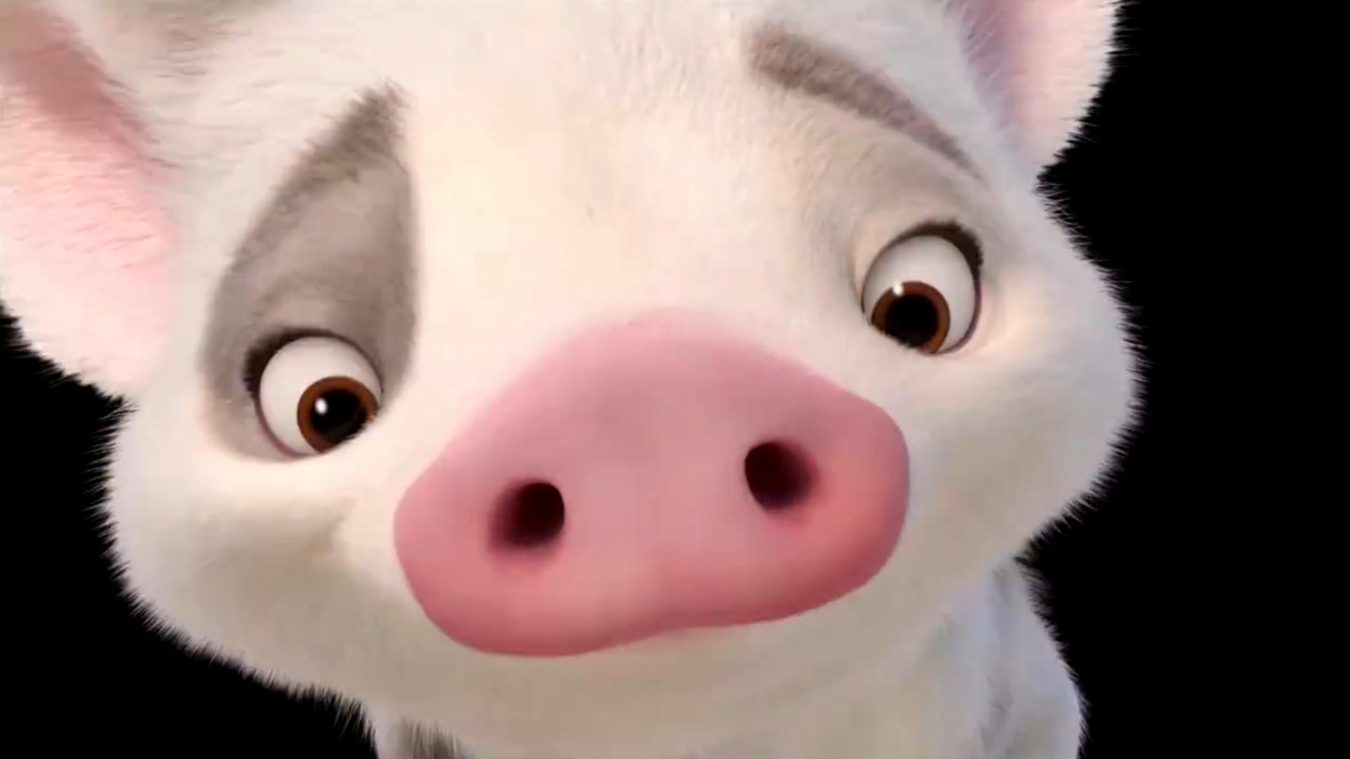 MOANA Promo Clip – Say Hello To Pua (2016) Disney Animated Movie HD