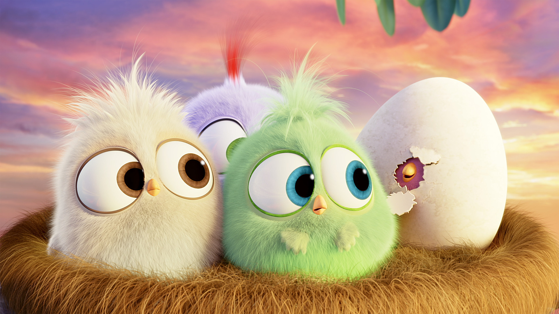 Hatchlings Angry Birds Hd Wallpaper [1920×1080] Need #iPhone #6S #Plus # Wallpaper/ #Background for #IPhone6SPlus? Follow iPhone 6S Plus 3Wallpapers…