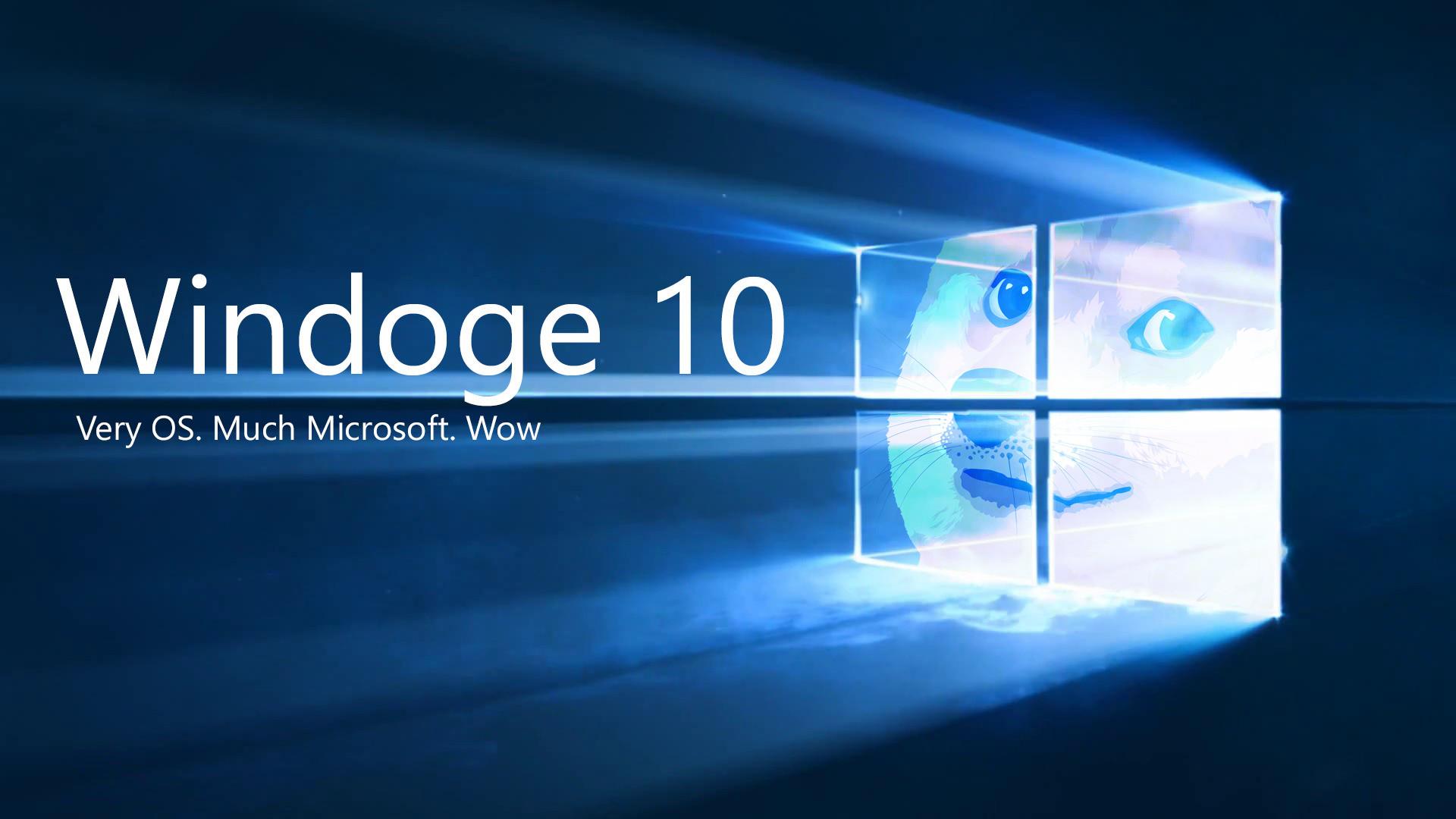 doge, Shiba Inu, Microsoft Windows, Memes Wallpapers HD / Desktop and  Mobile Backgrounds