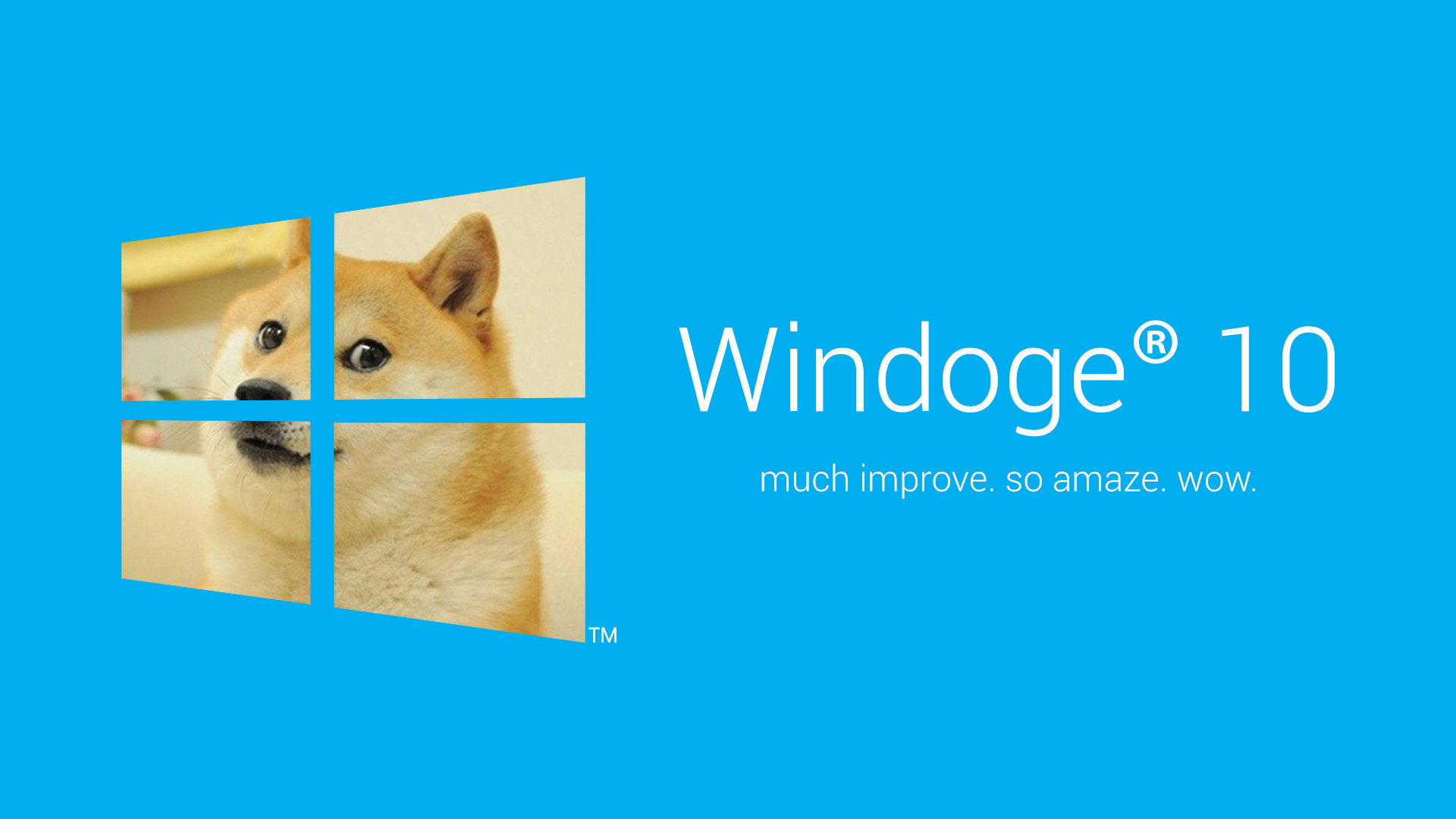 My collection of doge wallpapers