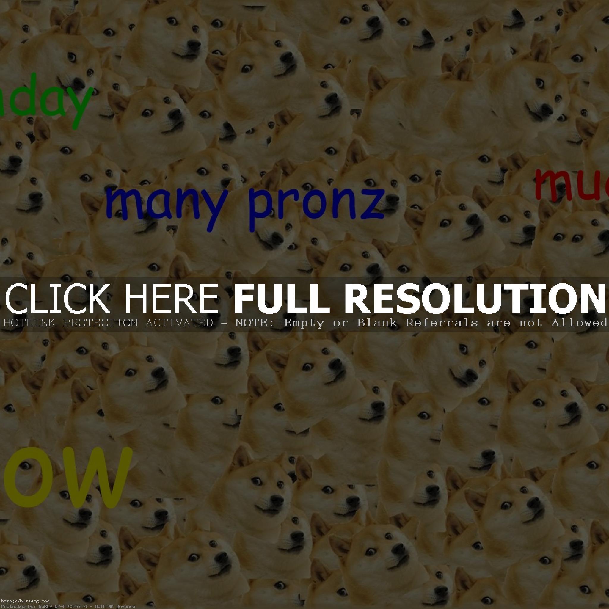 Doge Ipad (id: 178698)