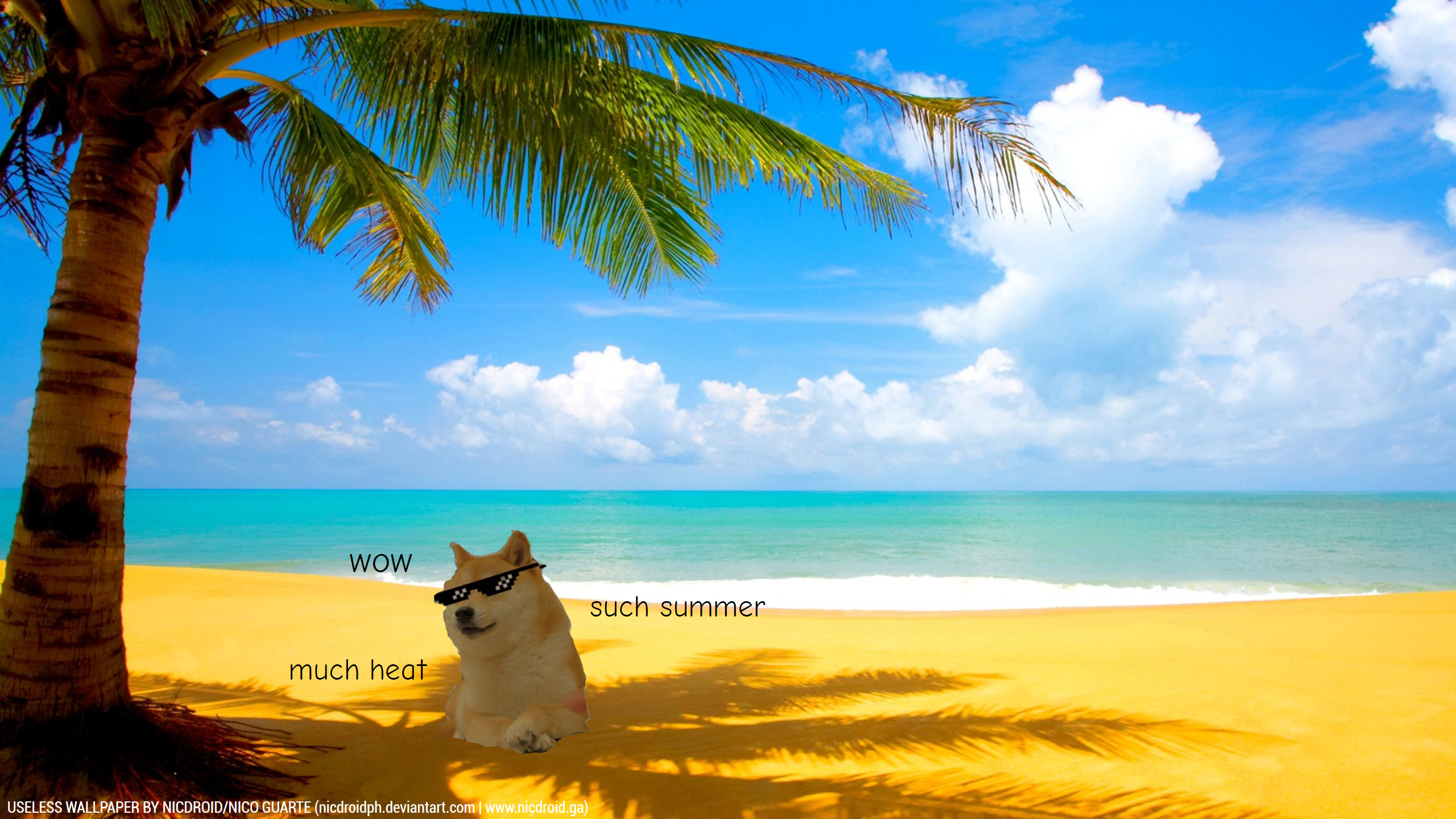 Summer Doge Wallpaper by NicDroidPH Summer Doge Wallpaper by NicDroidPH